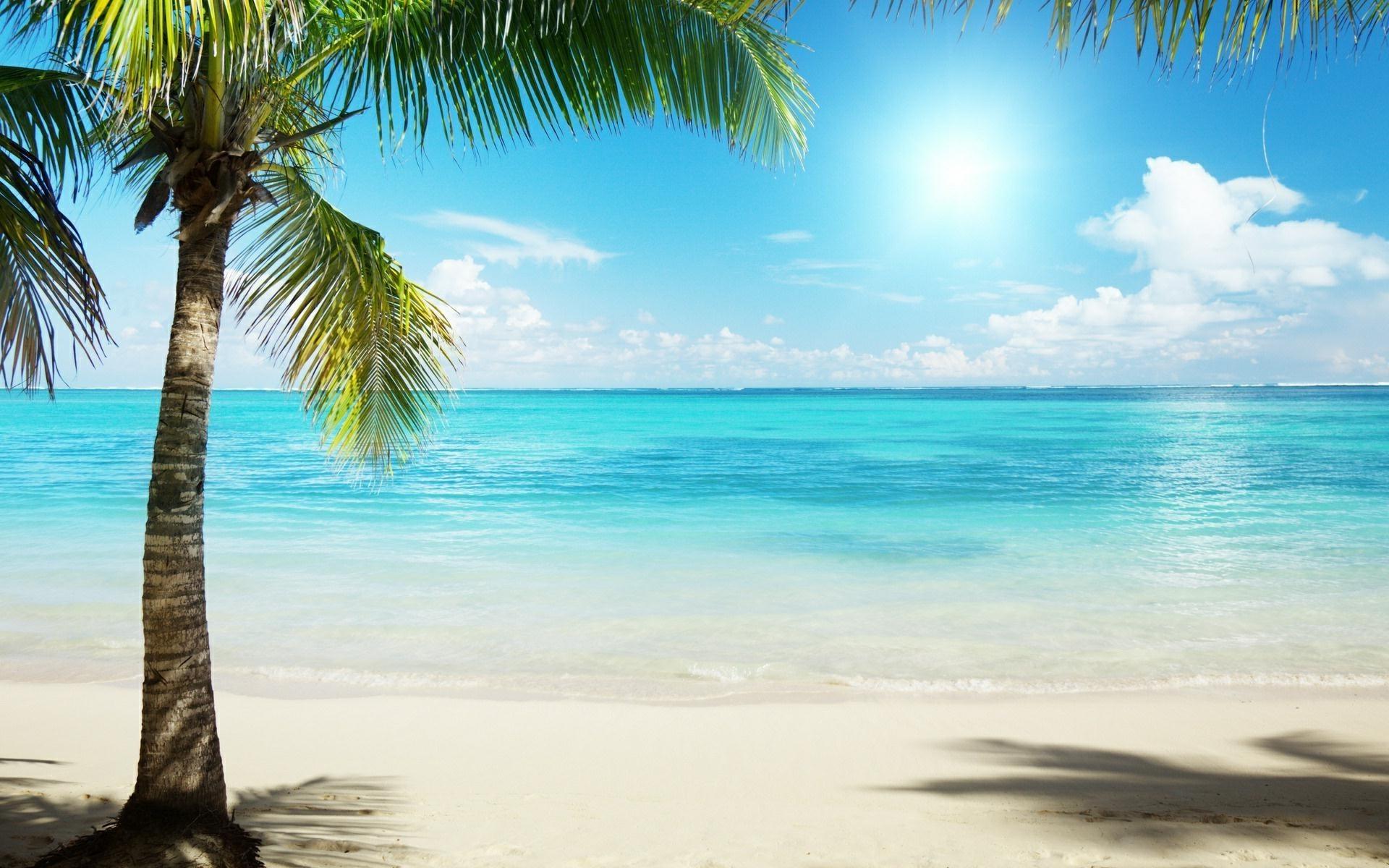Tropical Beach Background wallpaper     #6783