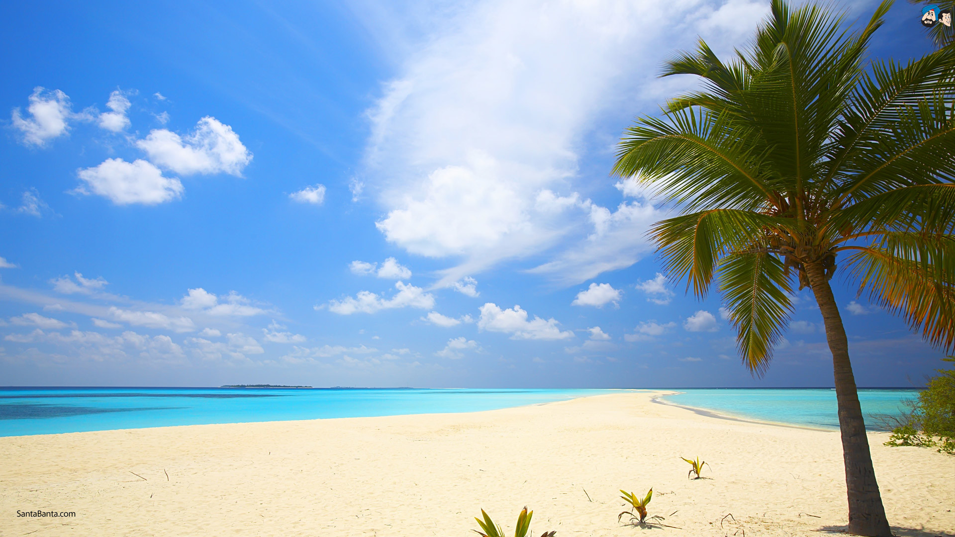 Beach Background Images – Wallpaper Cave