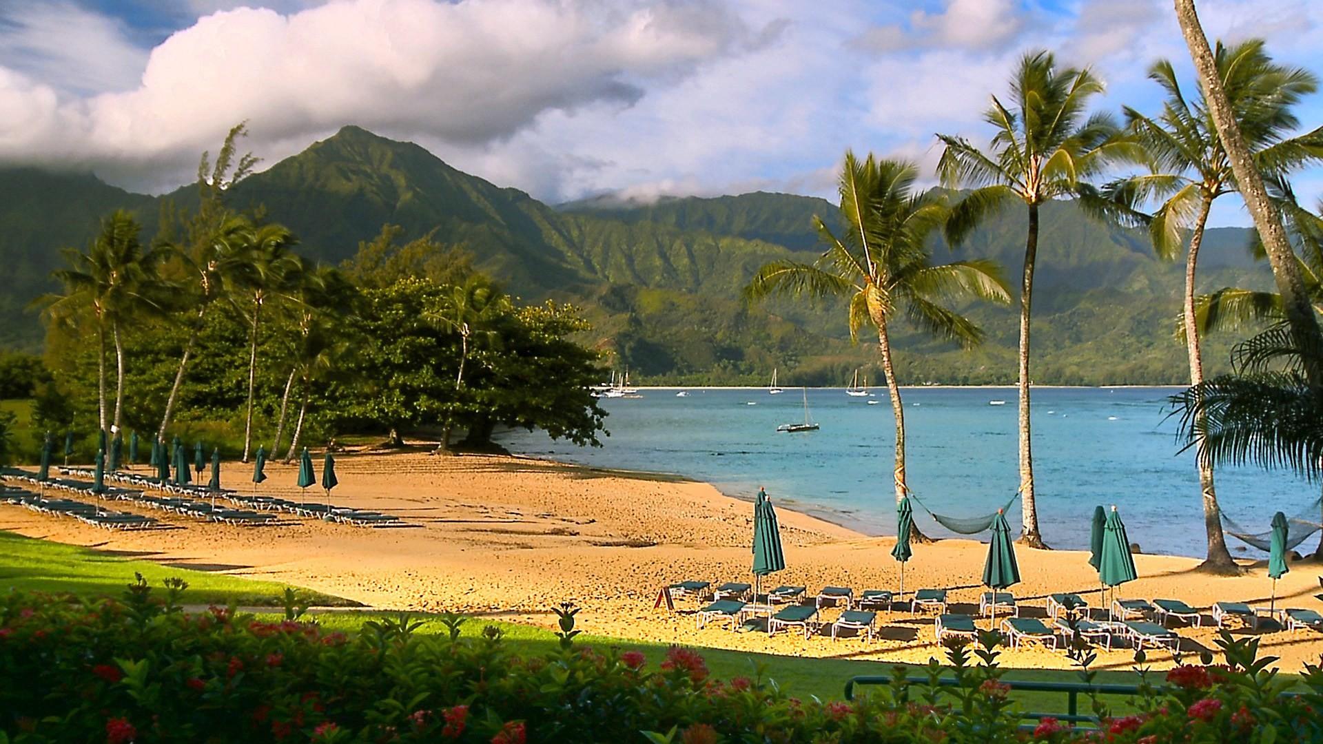 Hawaii Nature Background Beach Beaches Media Webshots Beautiful Hd
