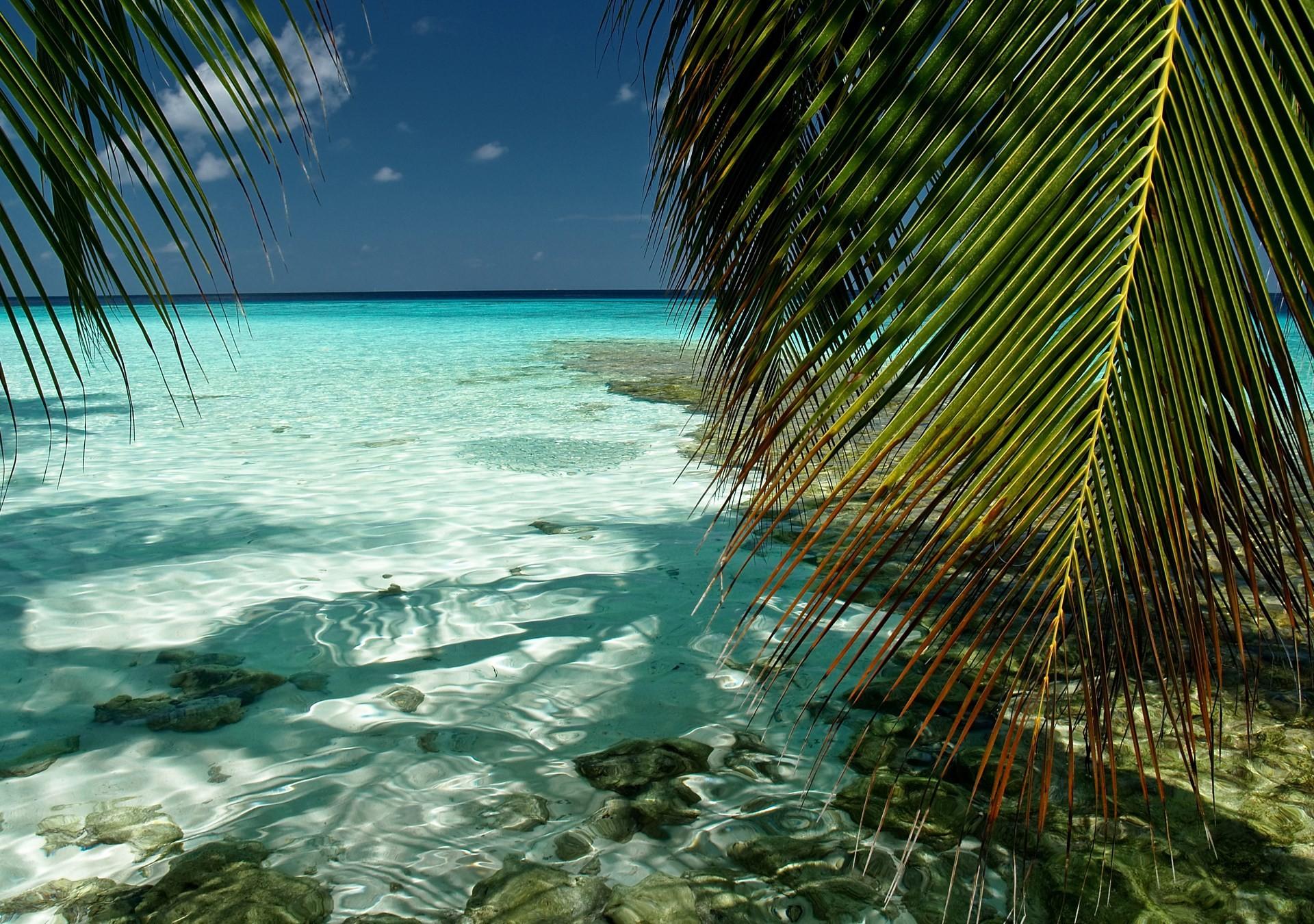 Desktop Background – beach