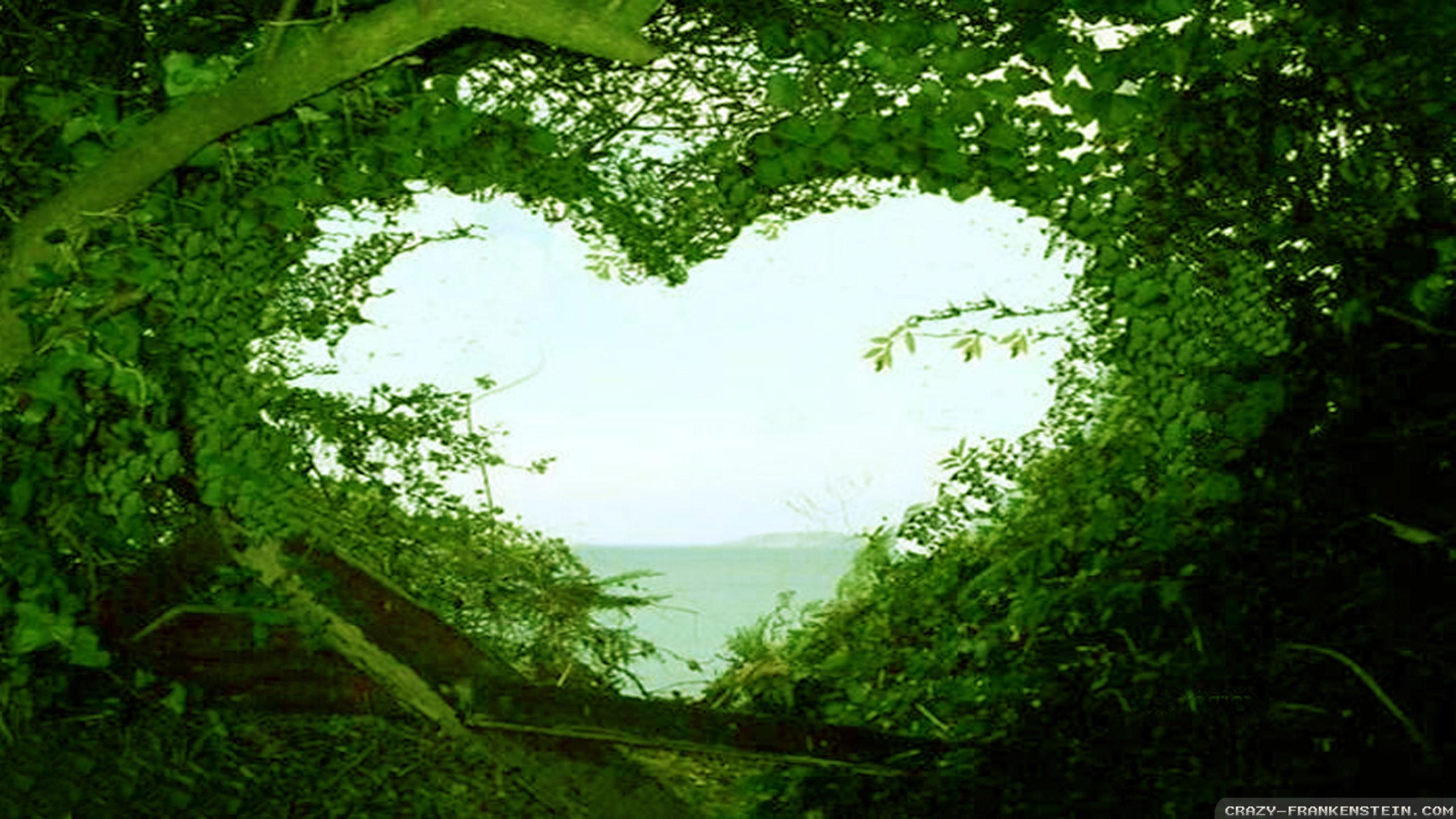 Wallpaper: Beautiful love nature wallpapers. Resolution: 1024×768    1280×1024   1600×1200. Widescreen Res: 1440×900   1680×1050   1920×1200