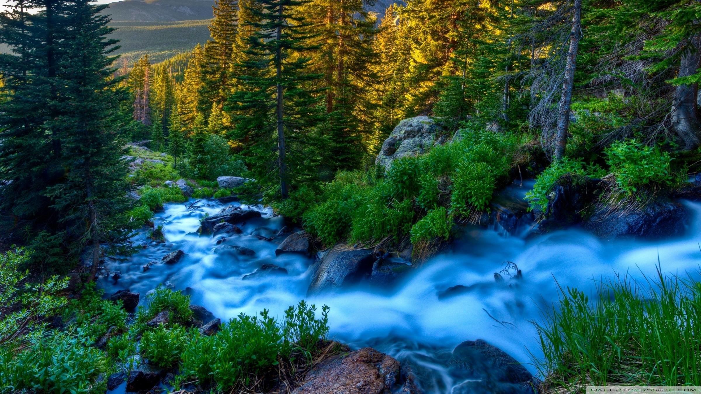 Fonds d'écran Nature : tous les wallpapers Nature
