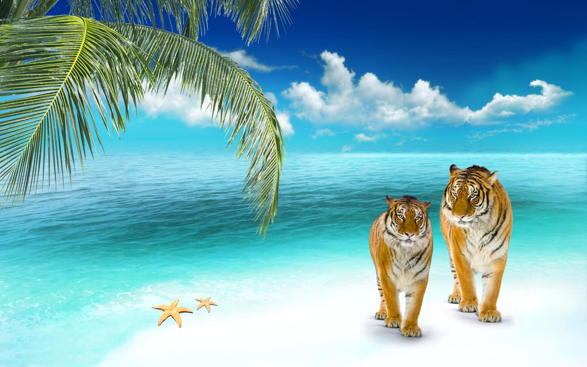 3D Beach Wallpapers