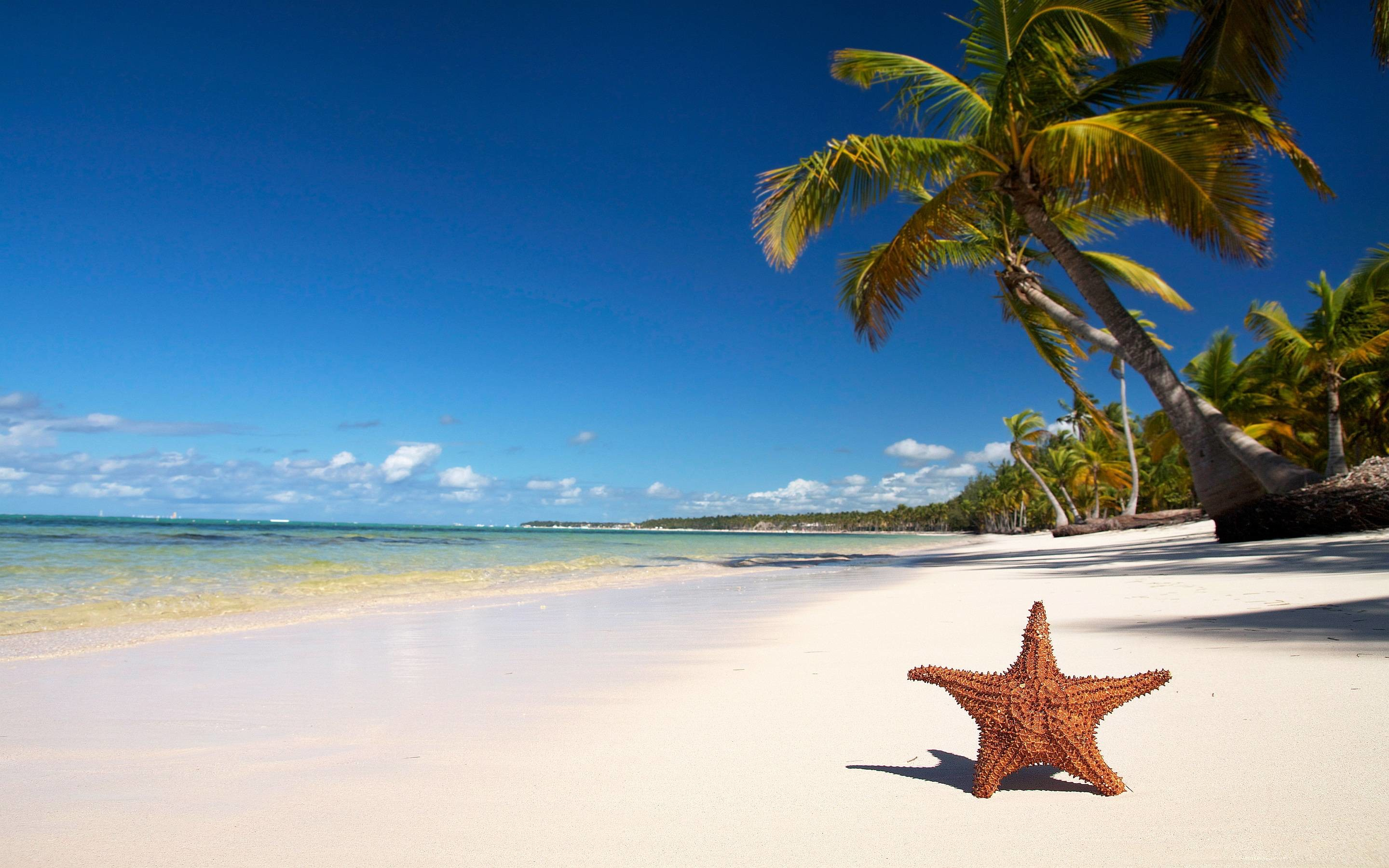 Tropical Beach Wallpapers | High Definition Wallpapers