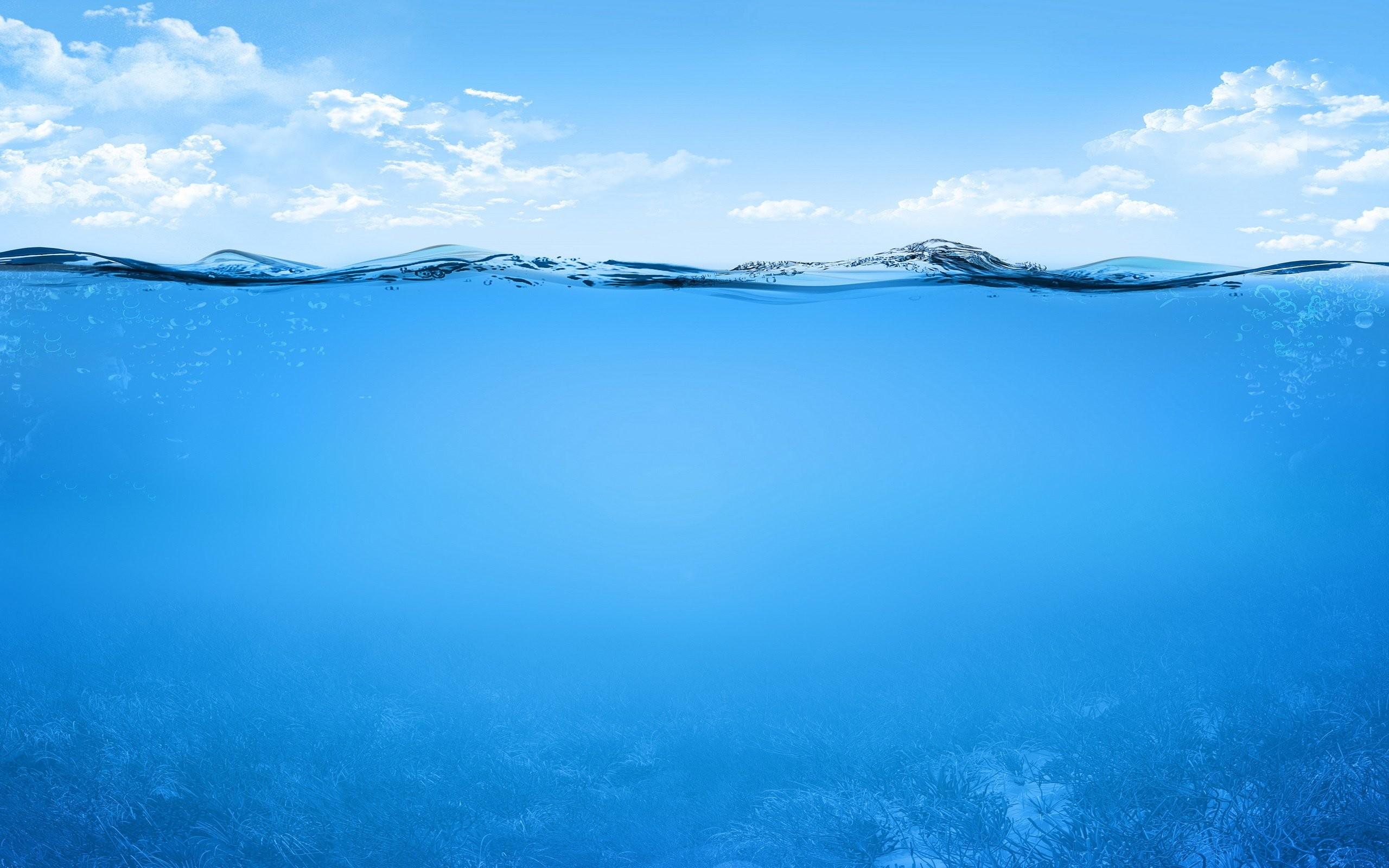 Explore and share Underwater Ocean Wallpaper on WallpaperSafari