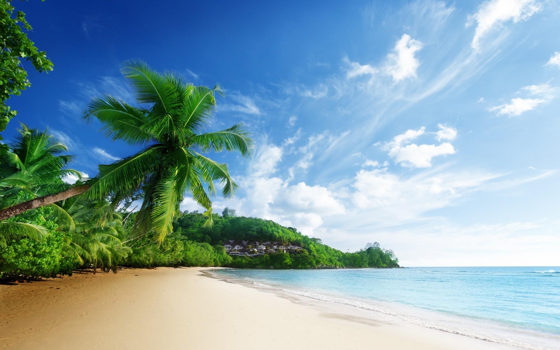 scenery sea beach sky clouds palm trees ocean tropical wallpaper .