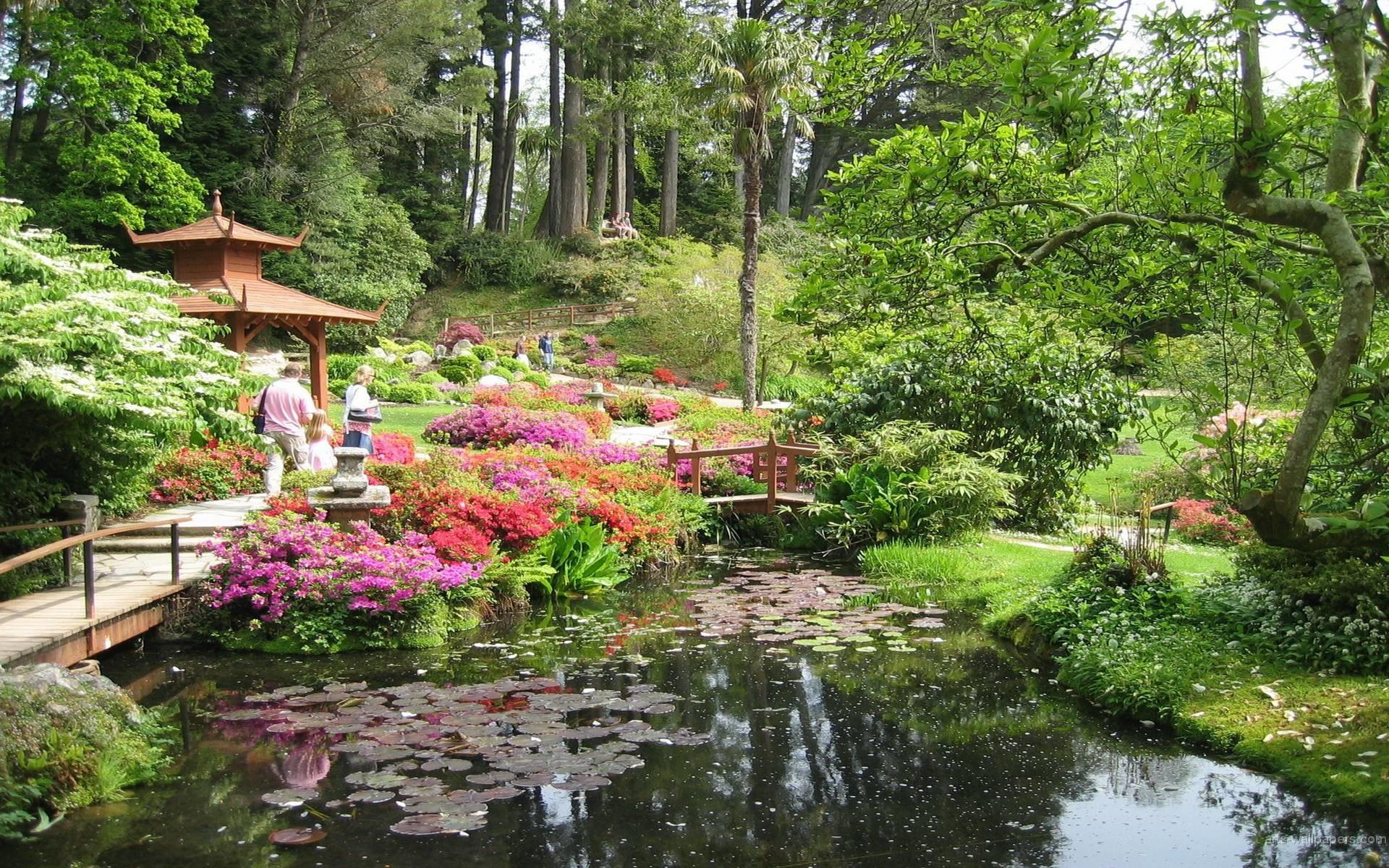 Japanese Garden Wallpapers, wallpaper, Japanese Garden Wallpapers .