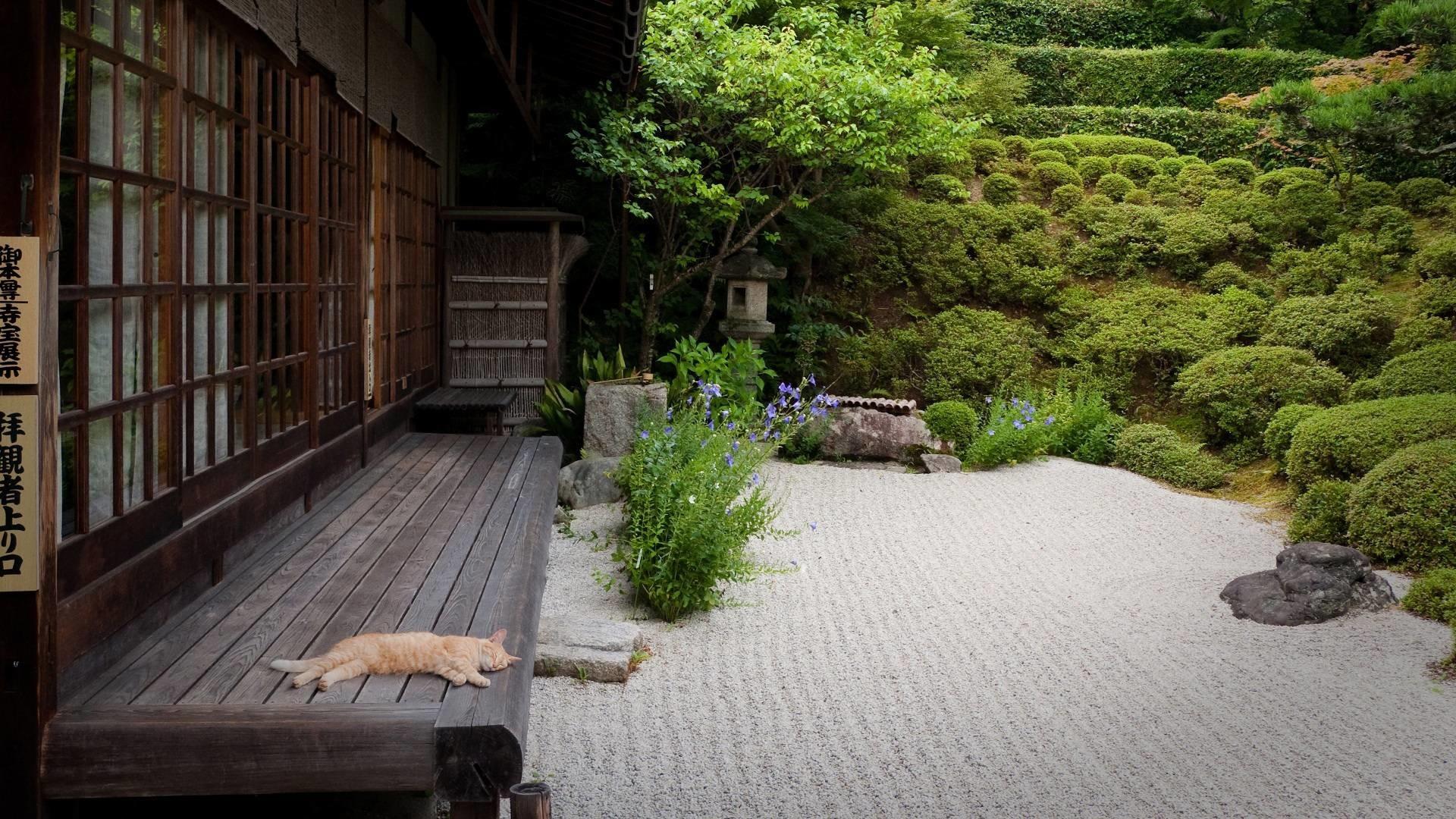 Japanese Garden   Cool Wallpapers