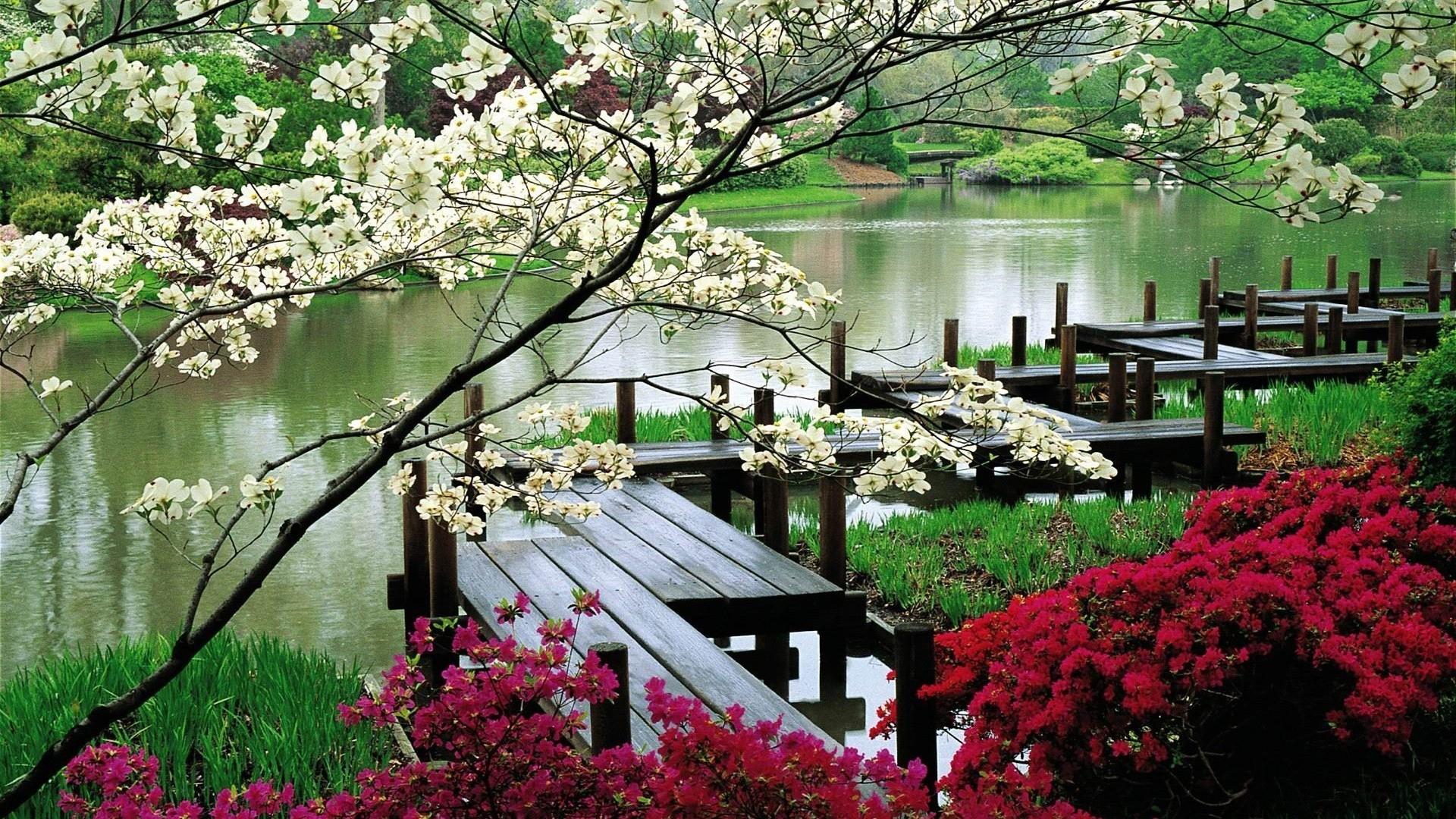 Wonderful Japanese Zen Garden Wallpaper Fall Lw Screenshot Inside .