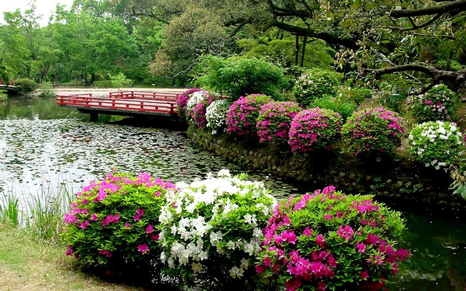 Japanese Flower Garden Wallpaper