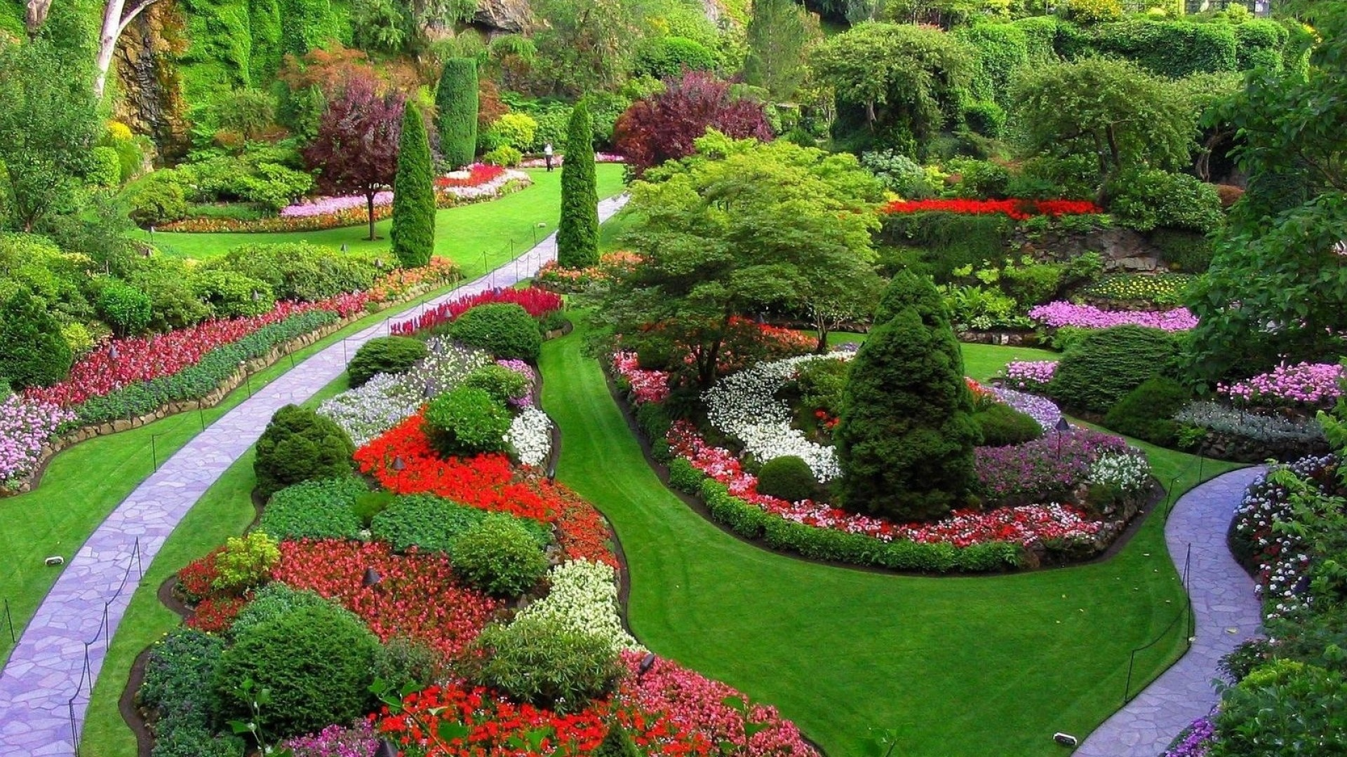 Colorful Flowers and Trees Garden Wallpaper