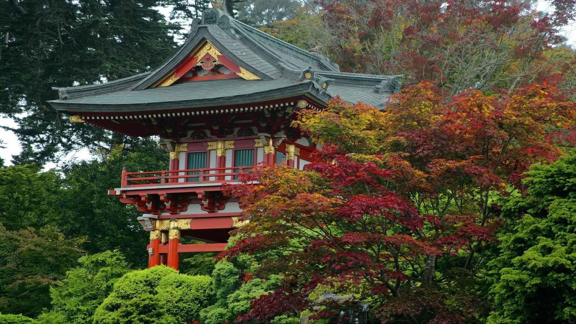 Tea garden Japanese California San Francisco gate temples wallpaper      285261   WallpaperUP