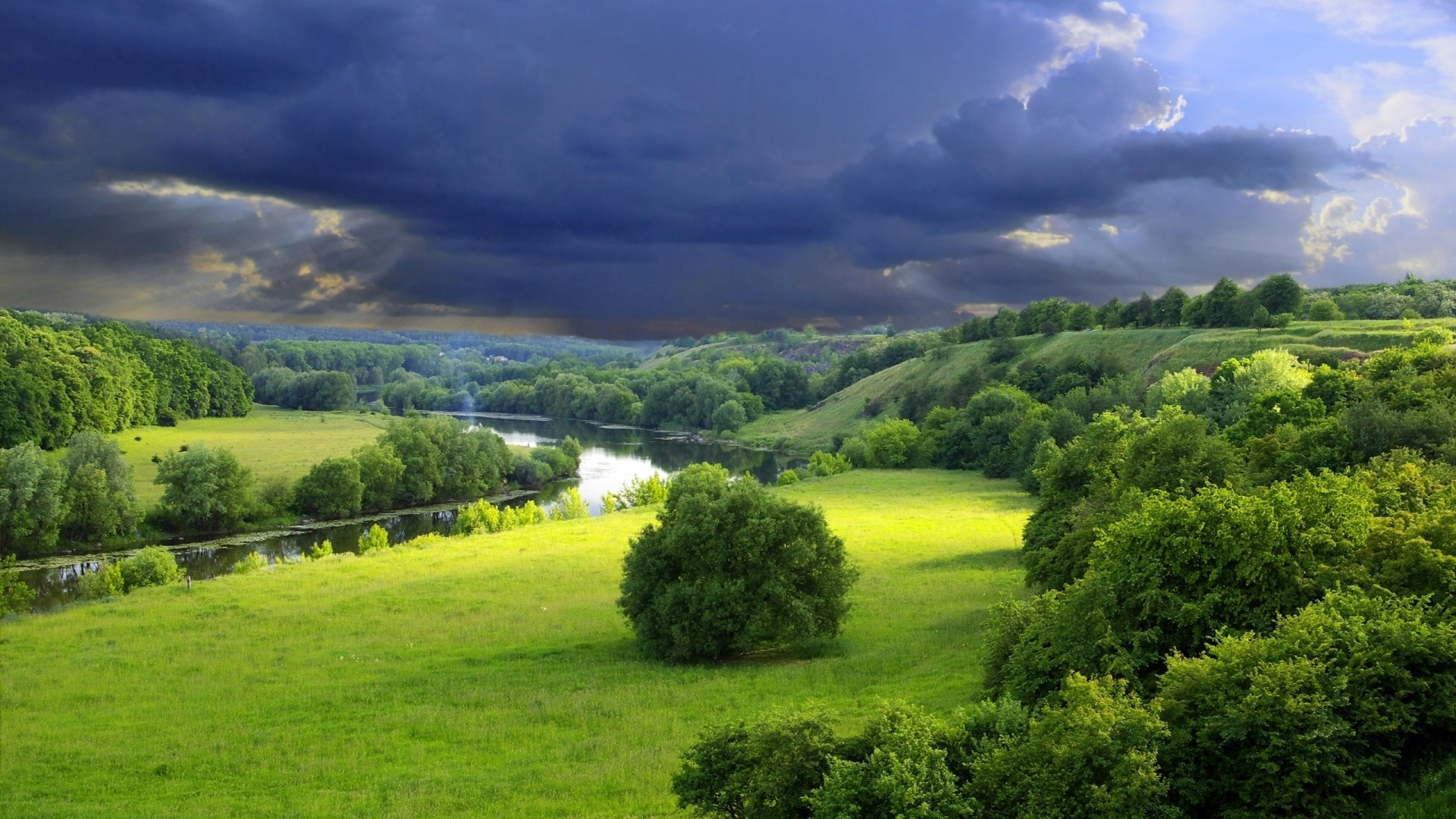 Preview wallpaper clouds, cloudy, sky, gloomy, gray, bushes, summer,