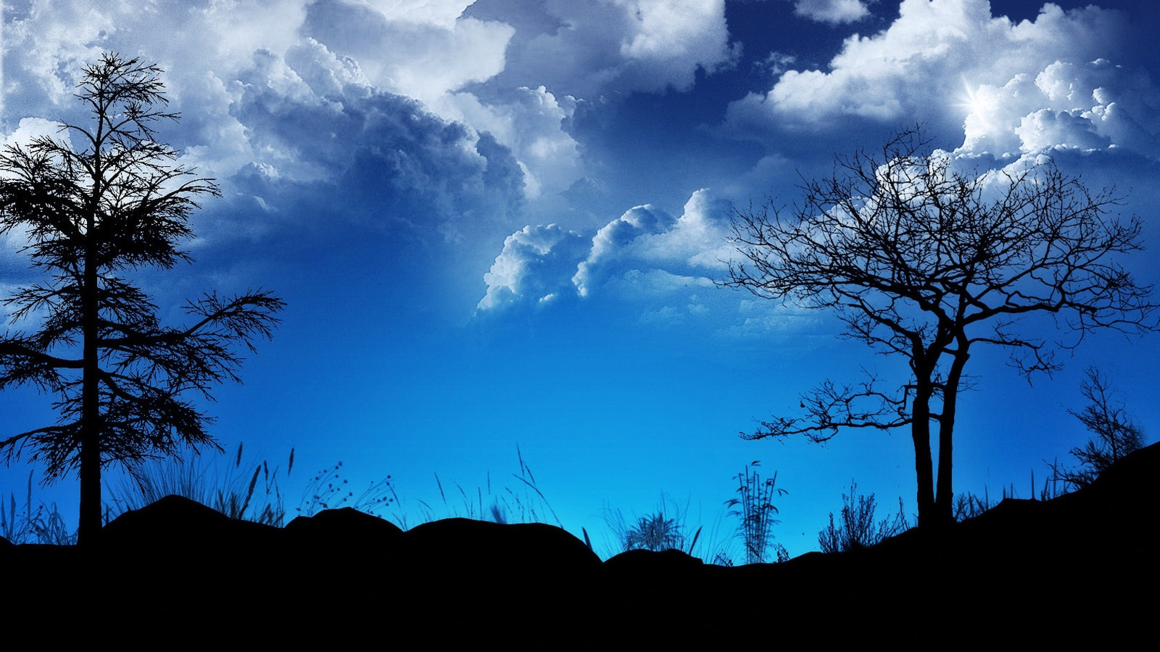 Wallpaper clouds, sky, night, outlines, blue, black, trees