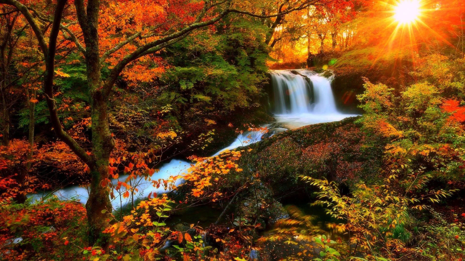 Waterfalls – Autumn Waterfalls Photography Sunlight Love Seasons Sunshine  Attractions Dreams Creative Pre Colors Stunning Falls
