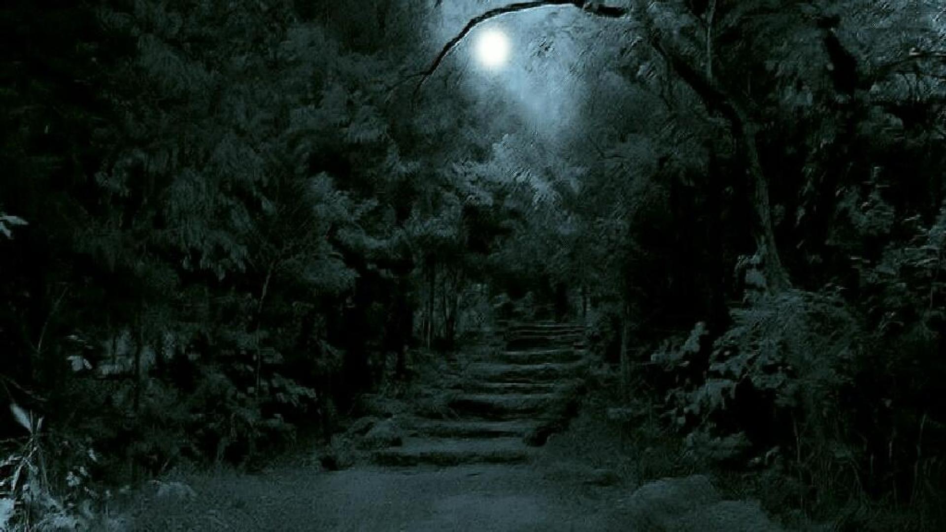 Dark Forest Moon