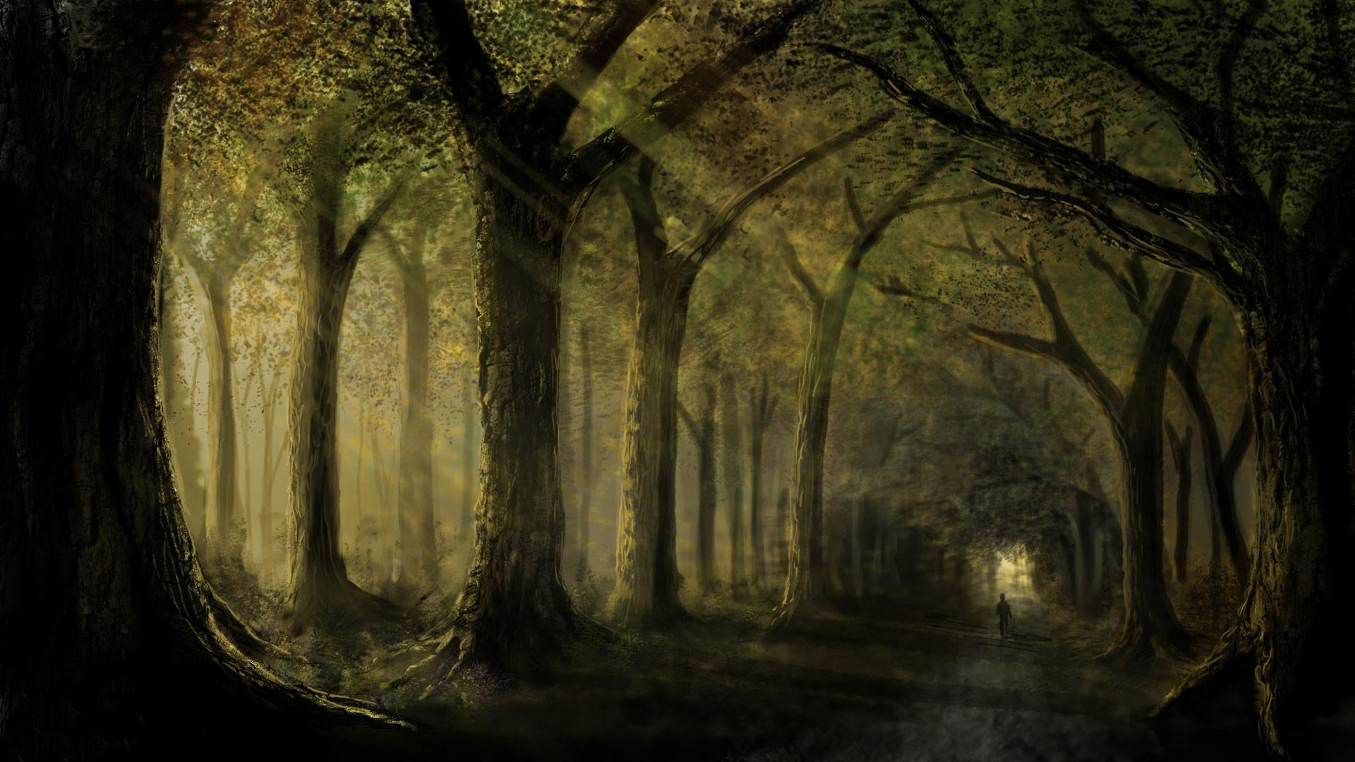 hd pics photos best dark nature trees woods horror forest path hd quality  desktop background wallpaper