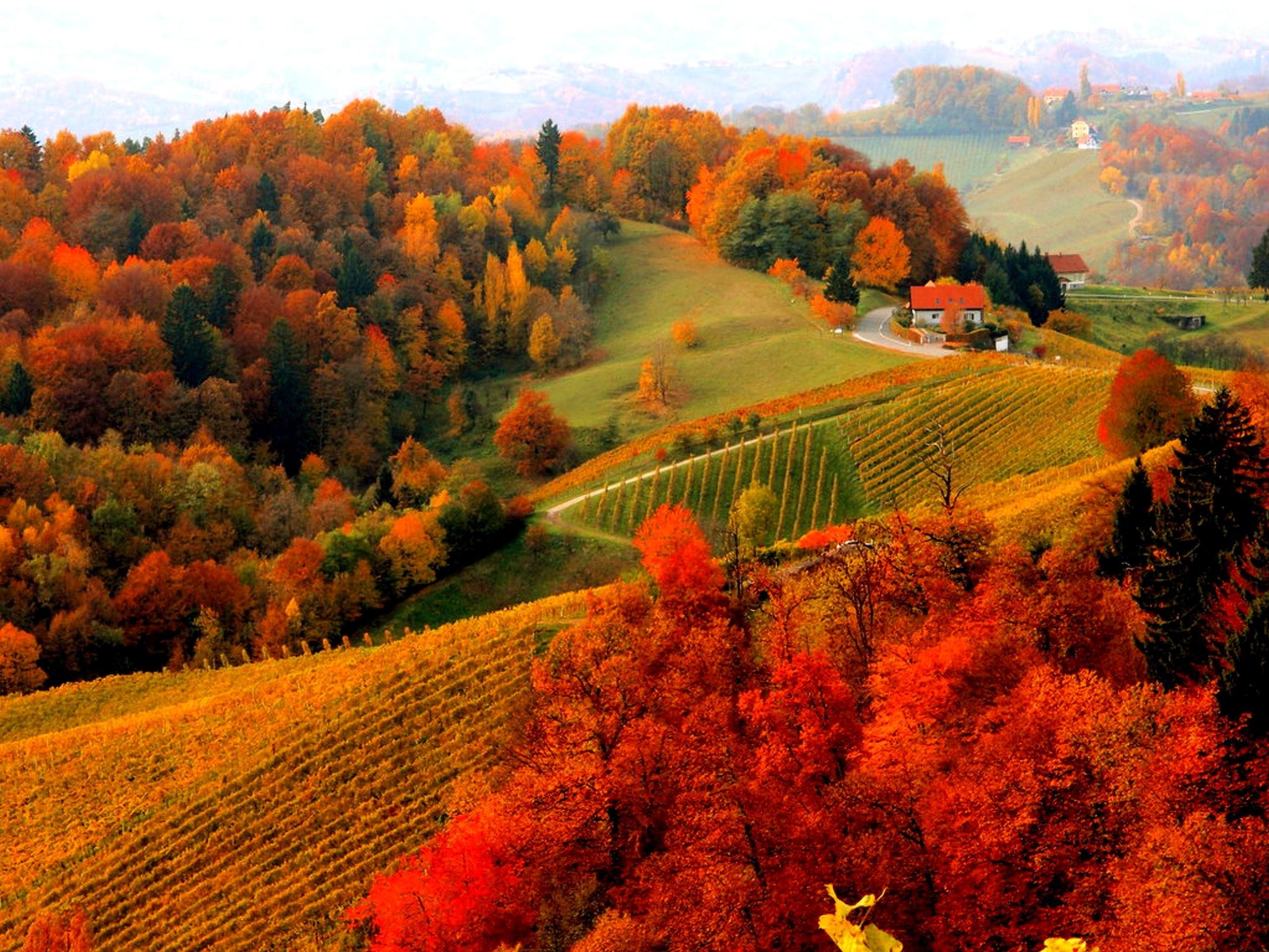HD-Fall-Scenery-Image