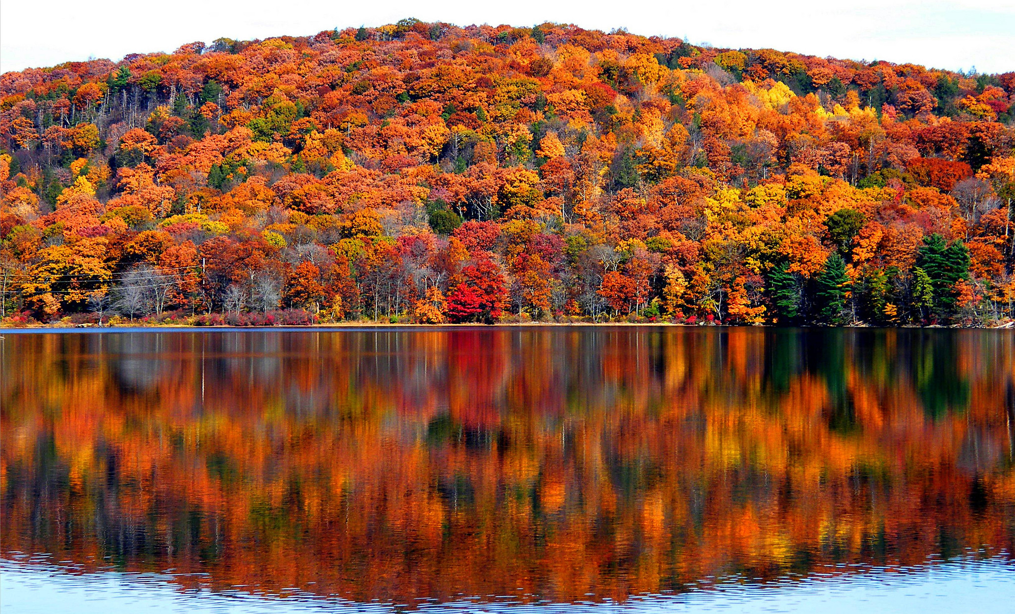 There's still time to see fall foliage – Vox