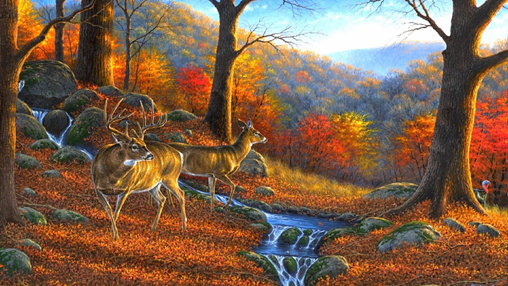 Ridge Tag – Autumn Season Lovely Seasons Creative Wildlife Animals Hunter  Trees Leaves Paintings Four Ridge