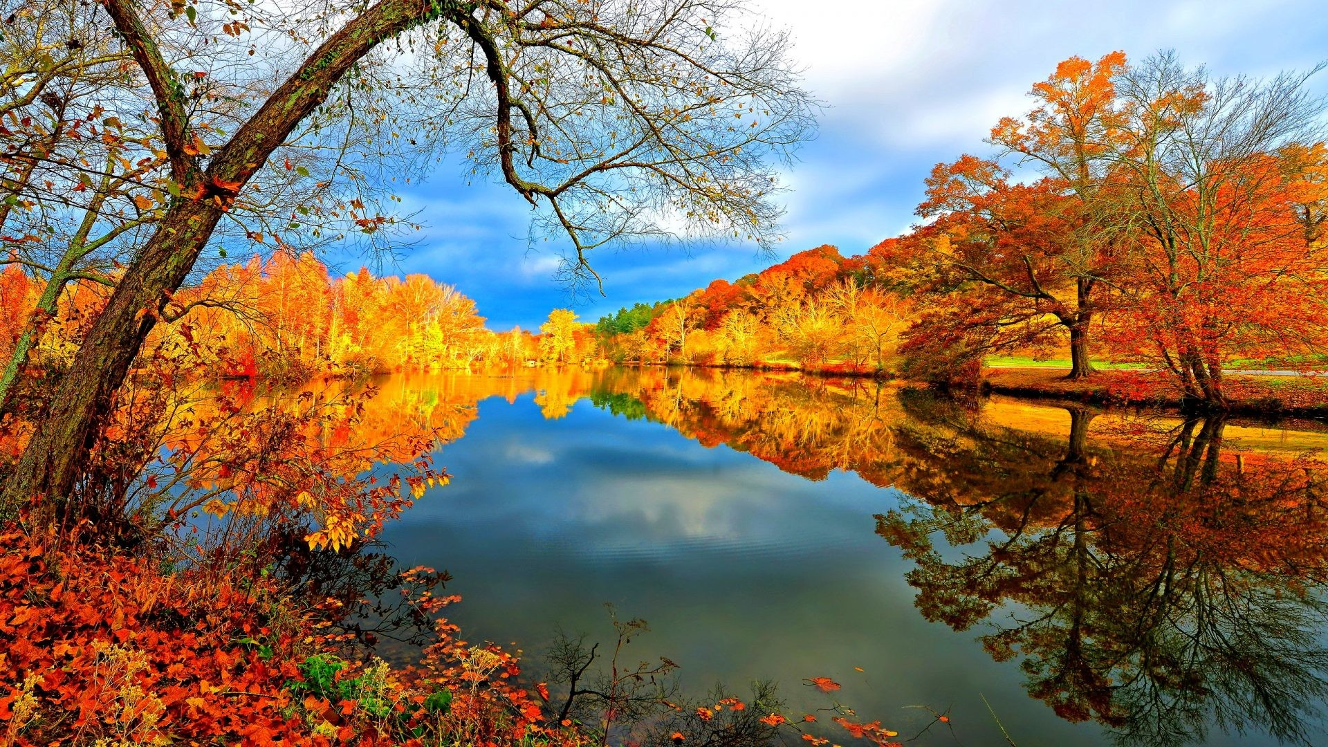 Mountains Tag – Colorful Fall Hills Mirrored Leaves Lake Peaceful Clouds  Lovely Nice Autumn Lakeshore Sunny