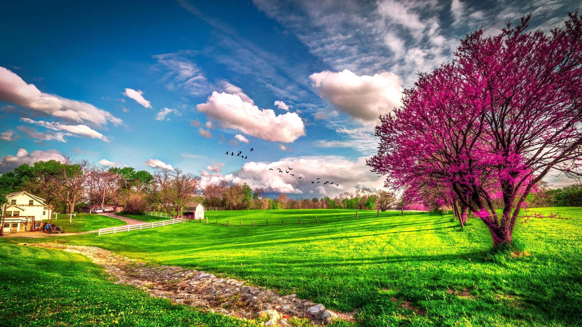 Landscape beautiful spring nature -. Spring Wallpapers. Seasons Wallpapers.  download beautiful HD Wallpaper