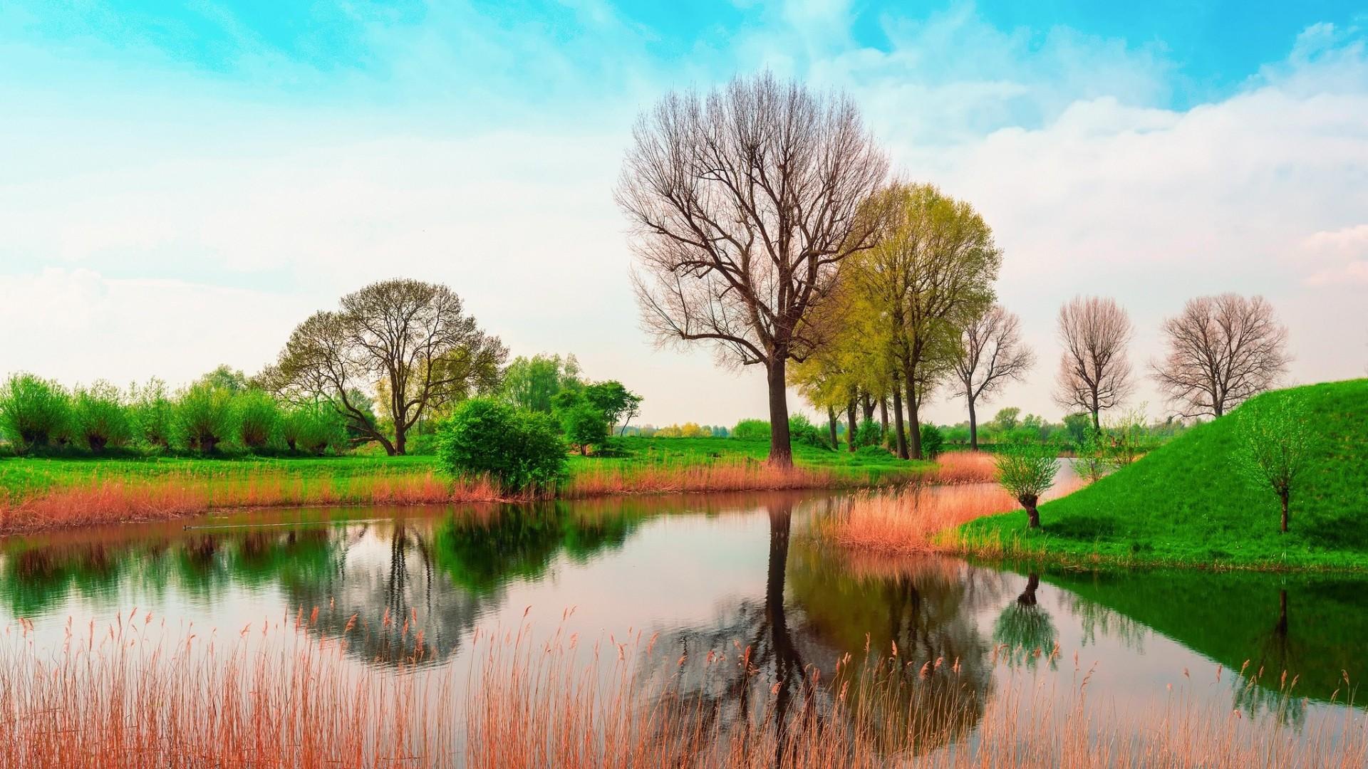 Wallpaper england, may, spring, nature