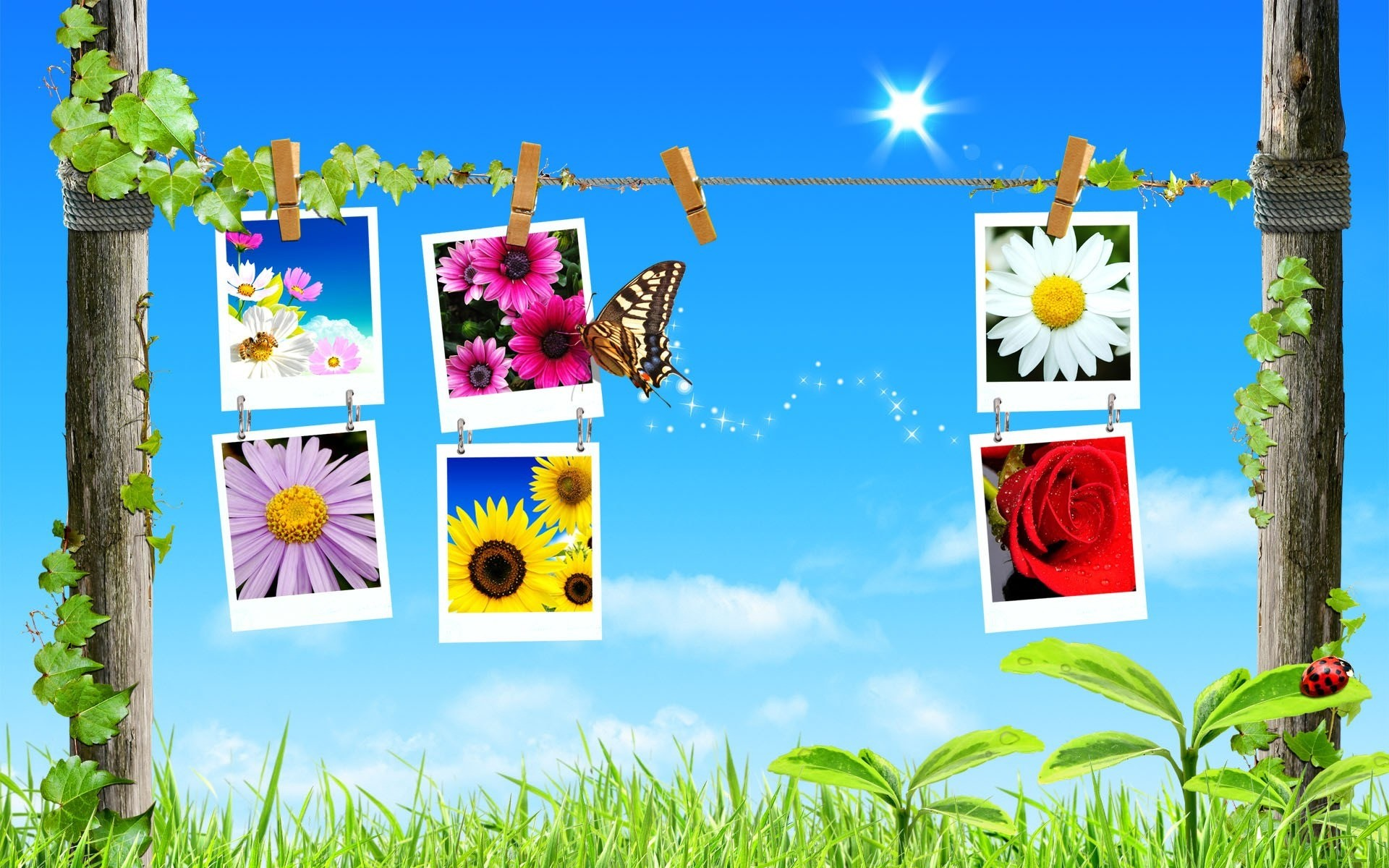 Spring Collage Wallpaper Spring Nature Wallpapers
