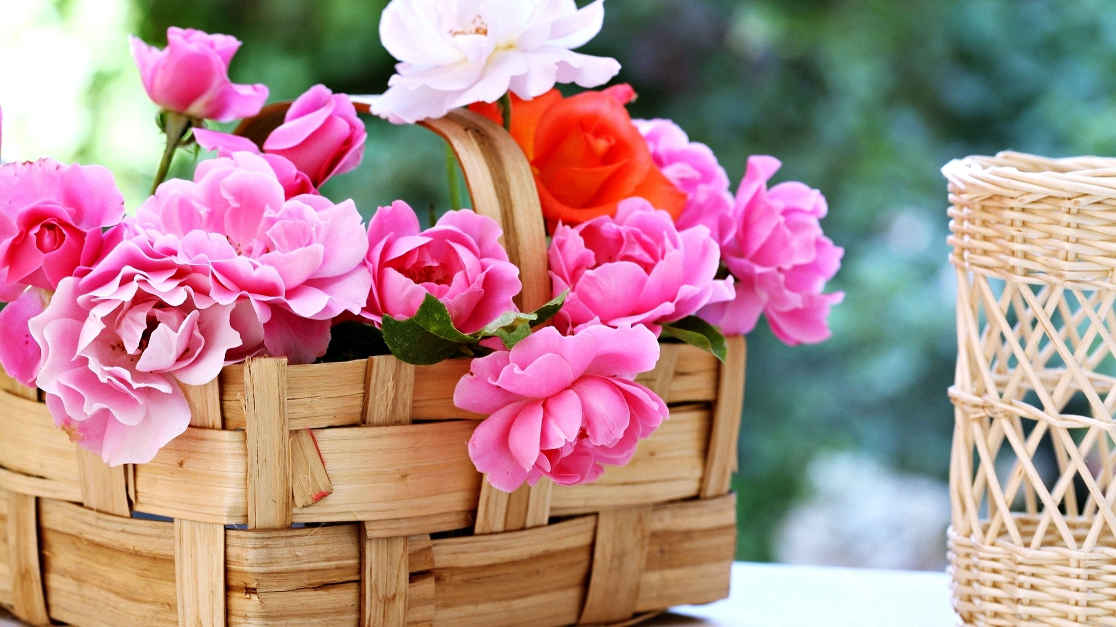 Basket roses flowers gardens spring nature beauty love romance emotions  life wallpaper | | 645564 | WallpaperUP