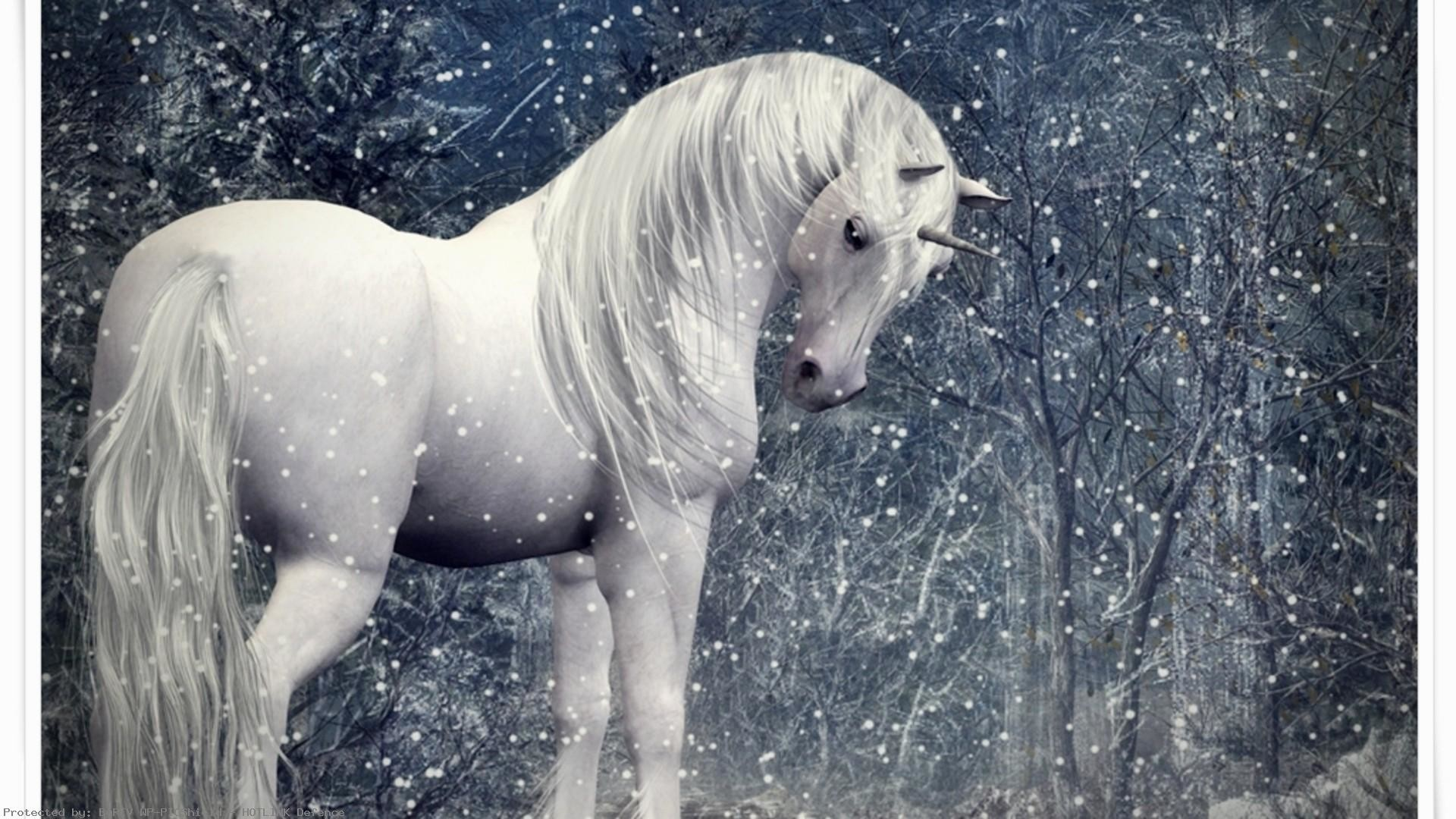 Unicorn-in-a-snowy-forest-1920×1080-snowy-forest-