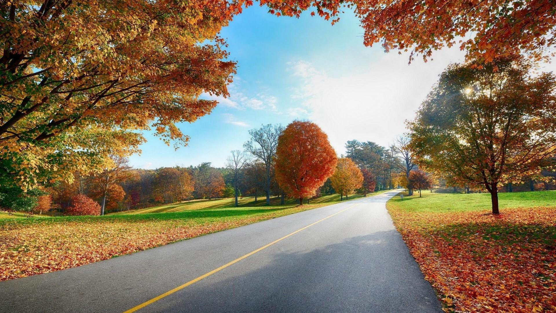 HD images 1080p nature autumn.