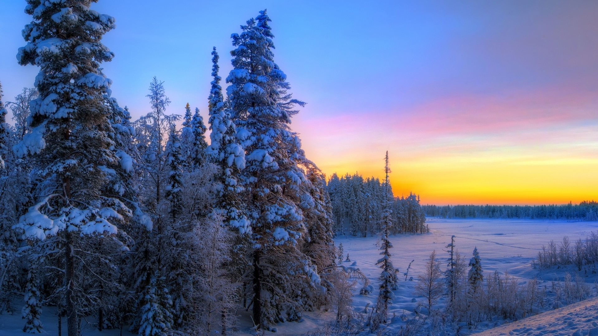 1080p wallpapers hd sunset winter trees landscape