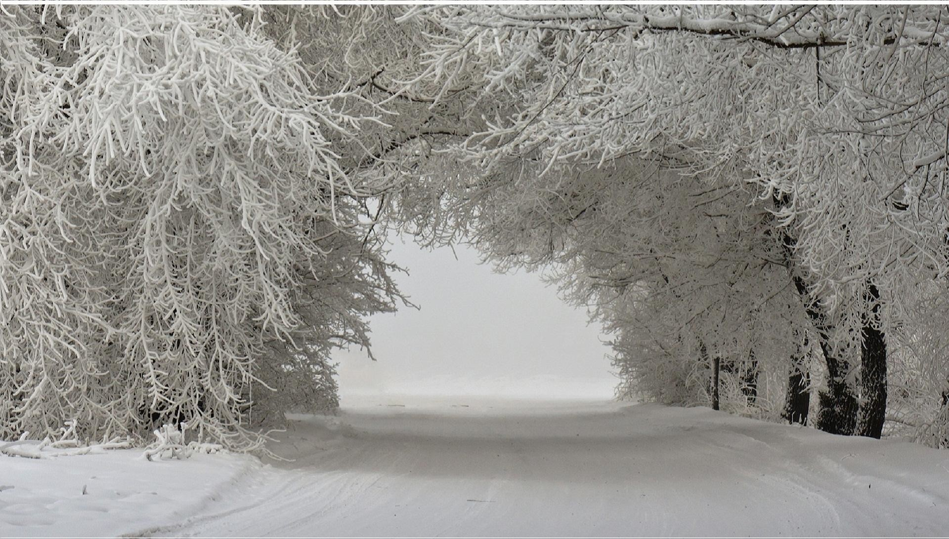 wallpaper.wiki-Winter-Snow-Background-PIC-WPB0089