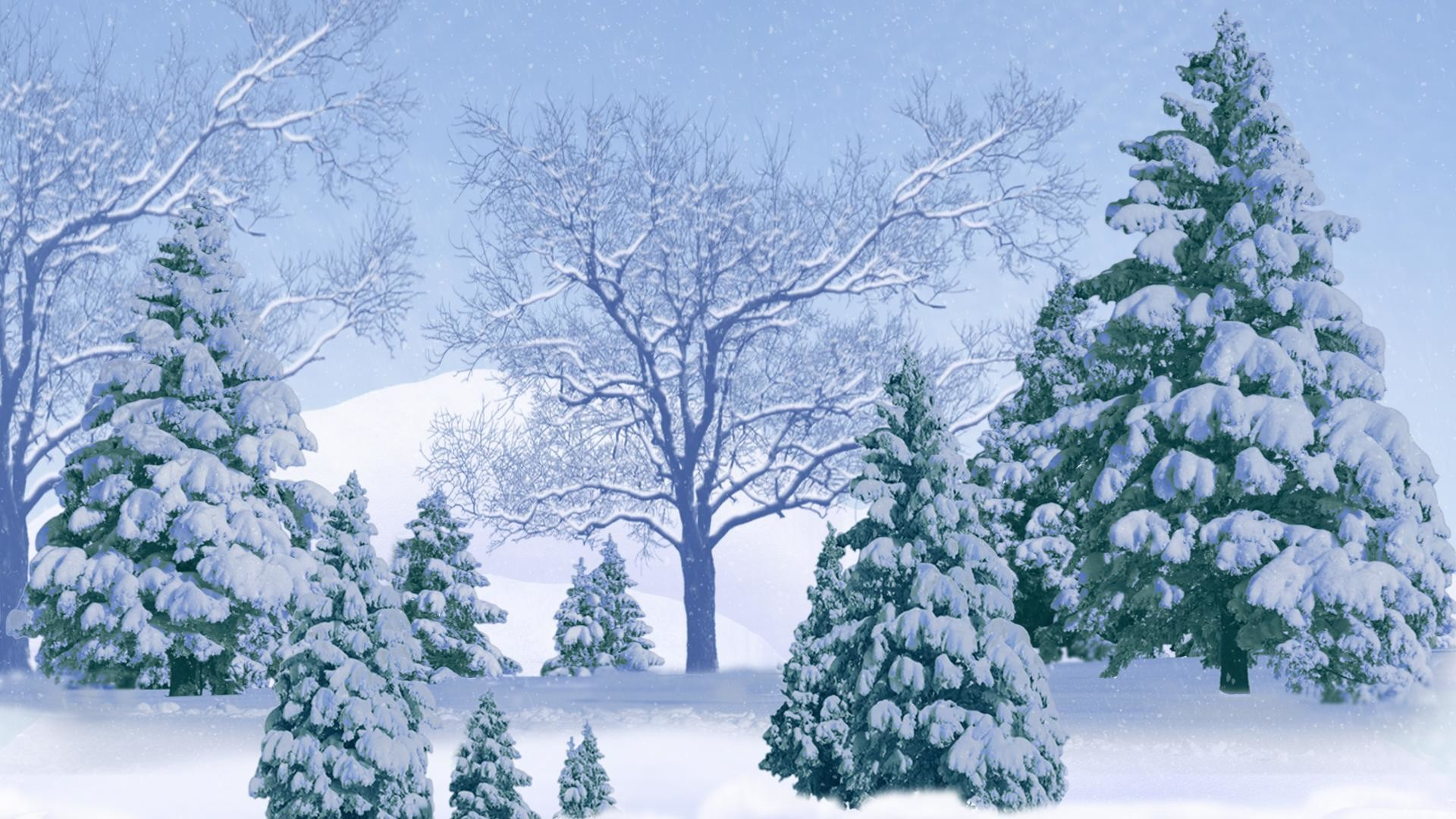 Winter and snow trees white backgrounds wide wallpapers:1280×800,1440×900,1680×1050  –