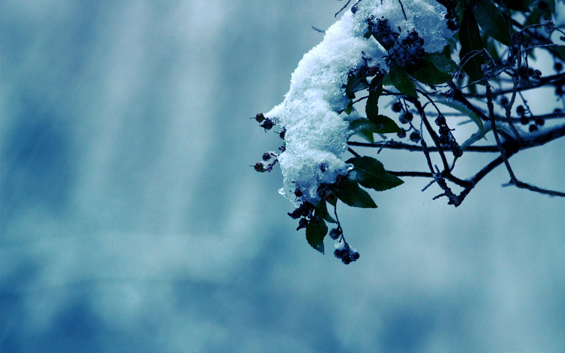 Widescreen Backgrounds Winter | wallpaper, wallpaper hd .