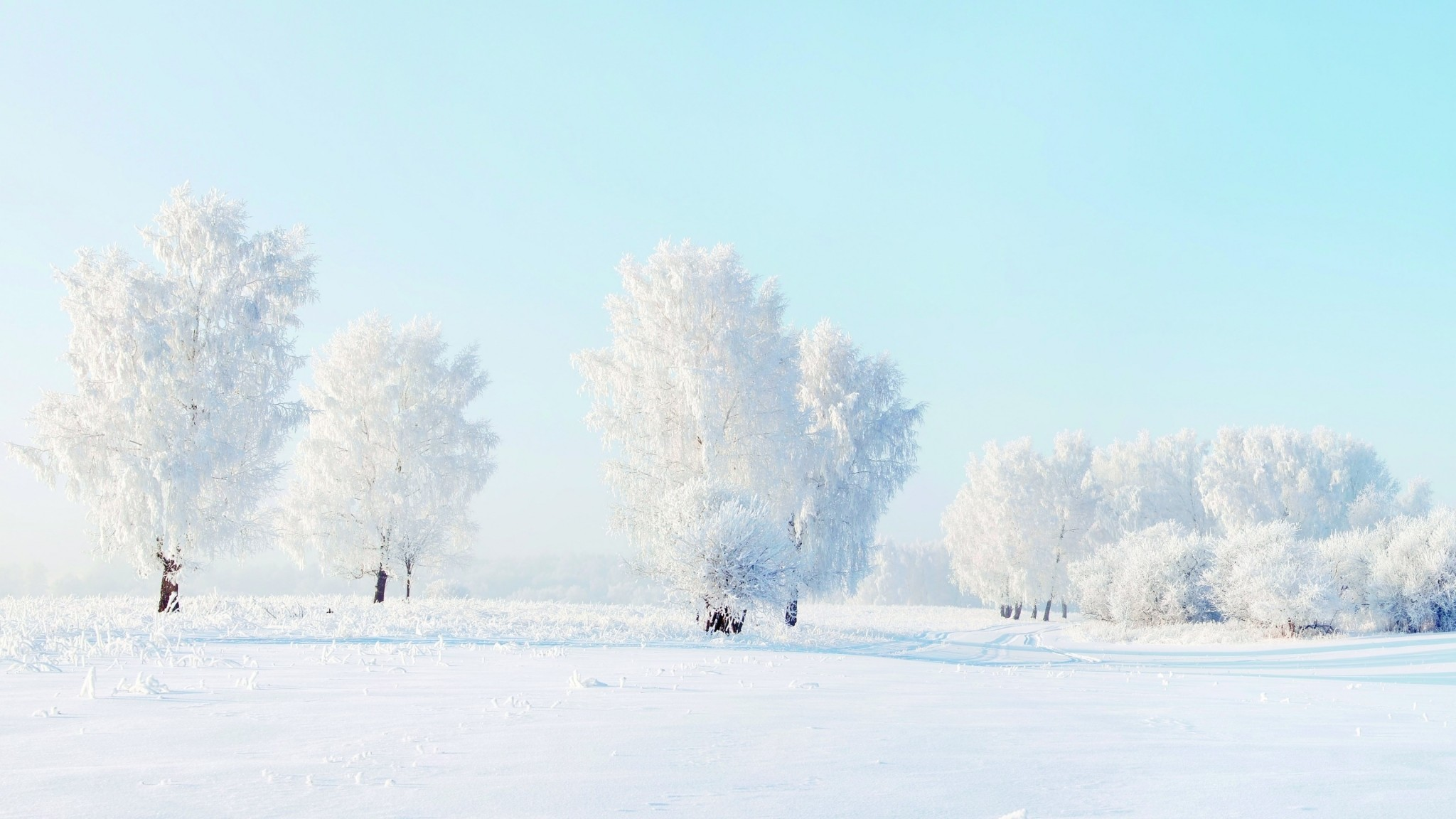 snow computer desktop backgrounds