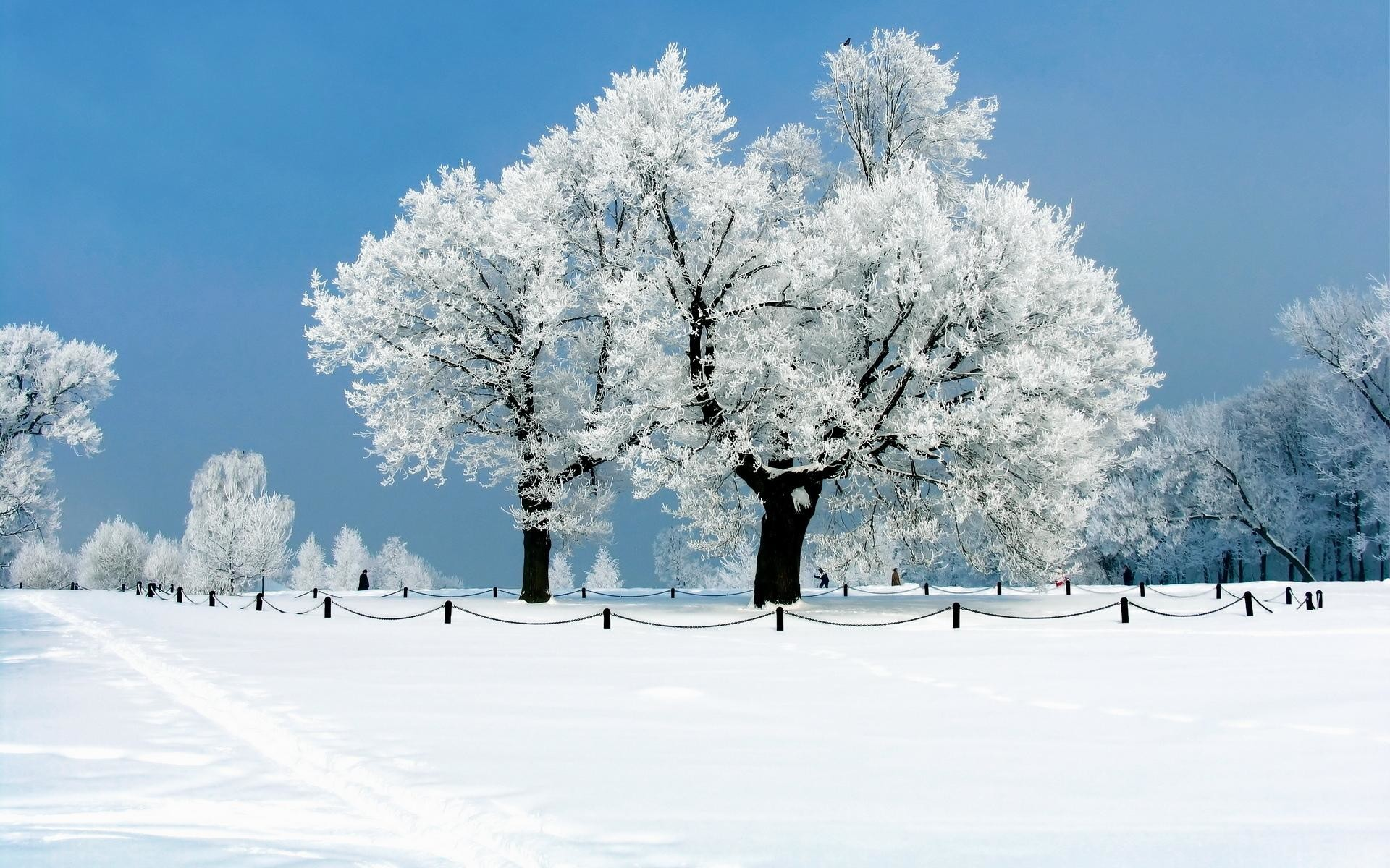wallpaper.wiki-Snow-Desktop-Backgrounds-PIC-WPB0076