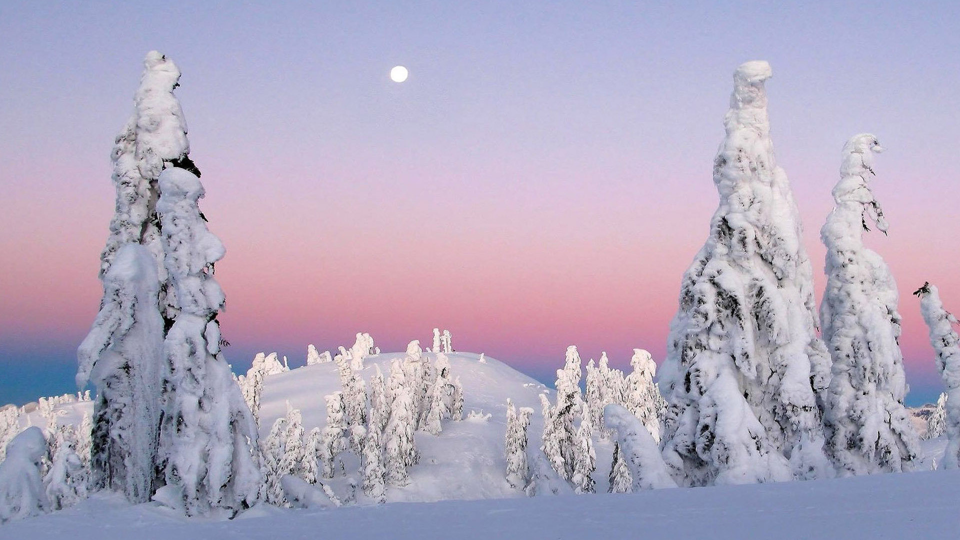 Frozen Wallpapers High Resolution | PixelsTalk.Net