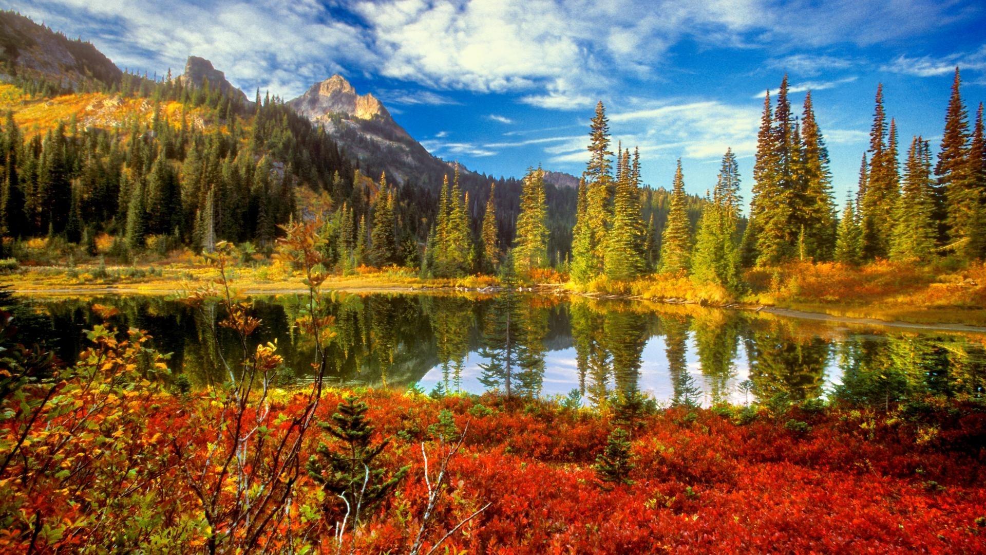 Beautiful Fall Backgrounds – WallpaperSafari