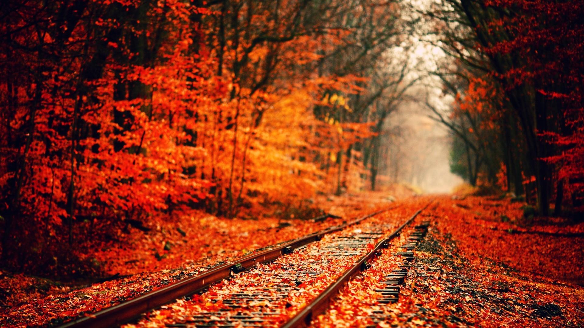 Fall Season Wallpaper | Desktop Image