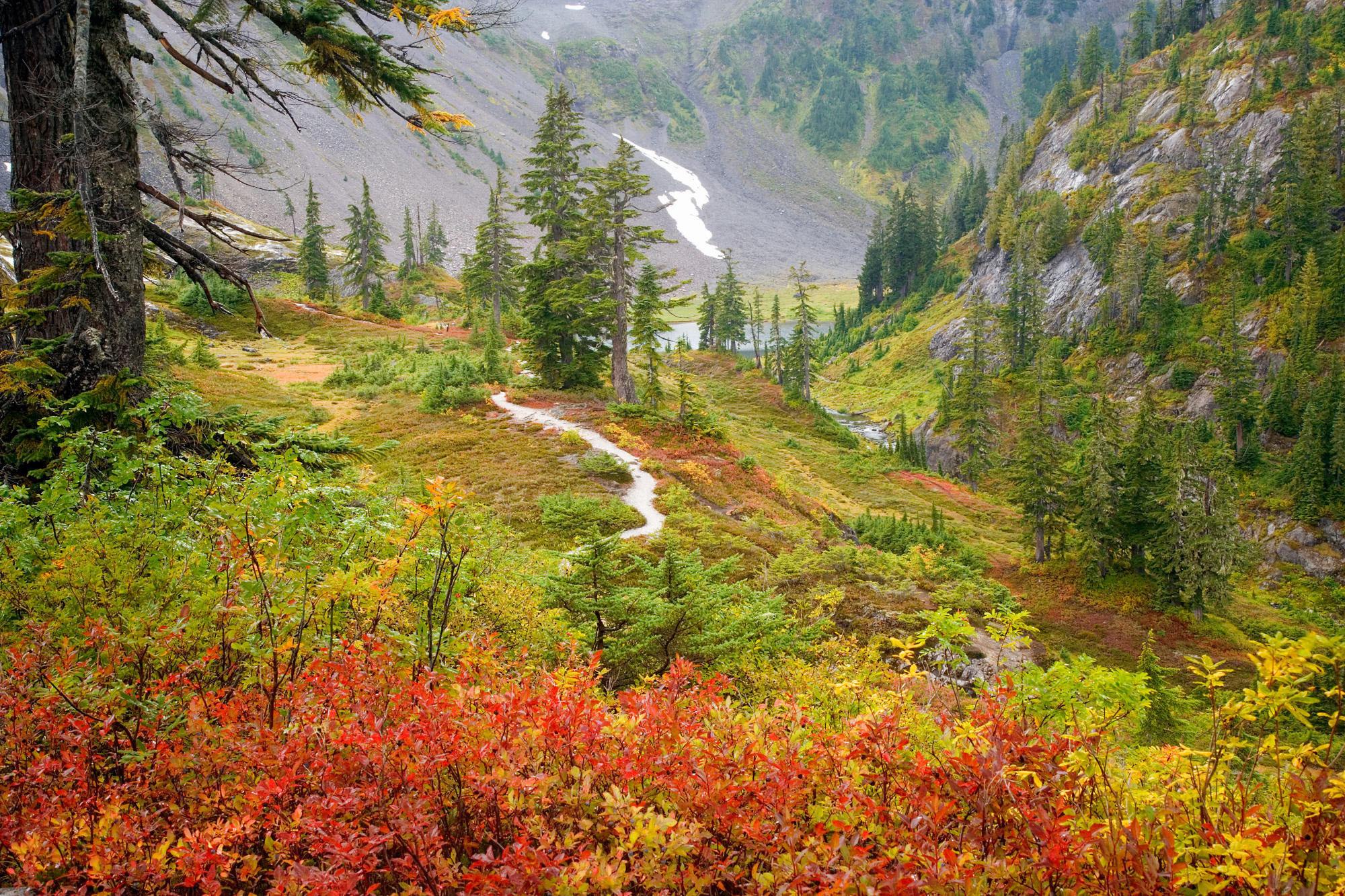 autumn season | Fall Season Desktop