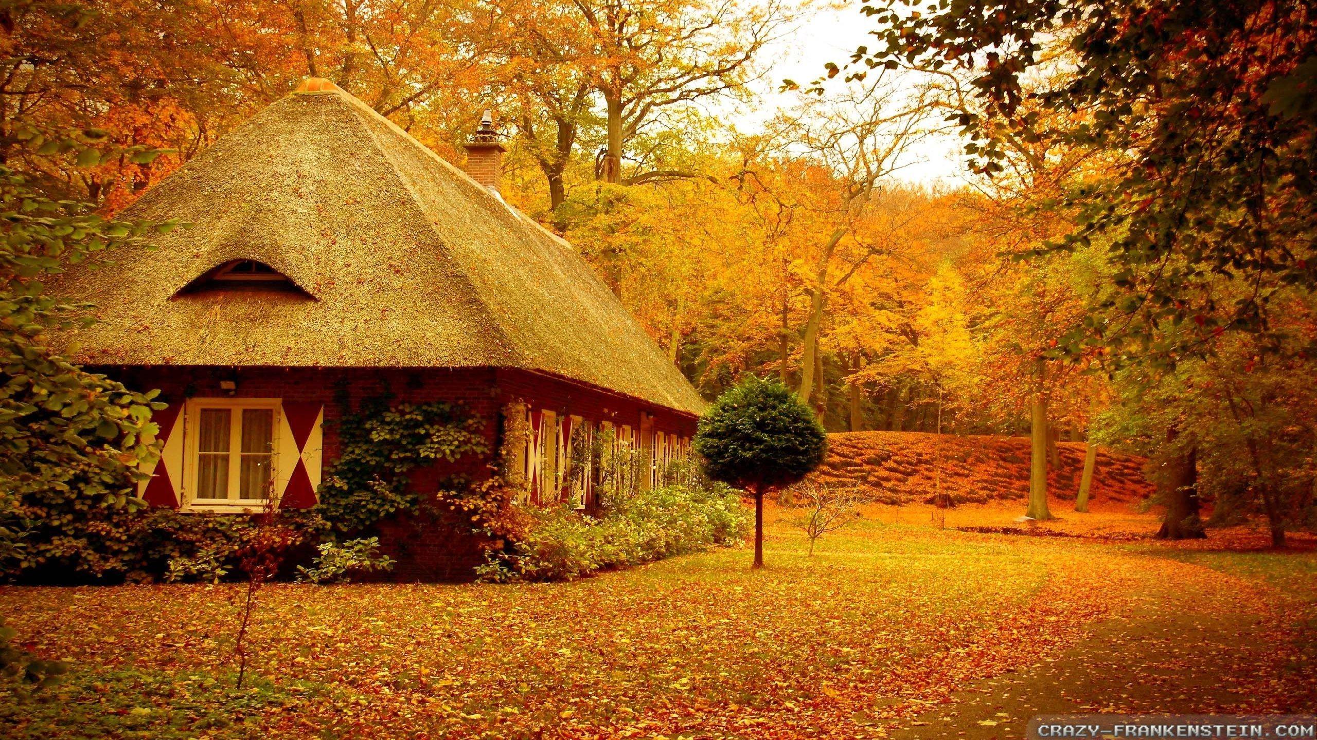 … backgrounds group 70; autumn scenes wallpapers 2 seasonal crazy  frankenstein …