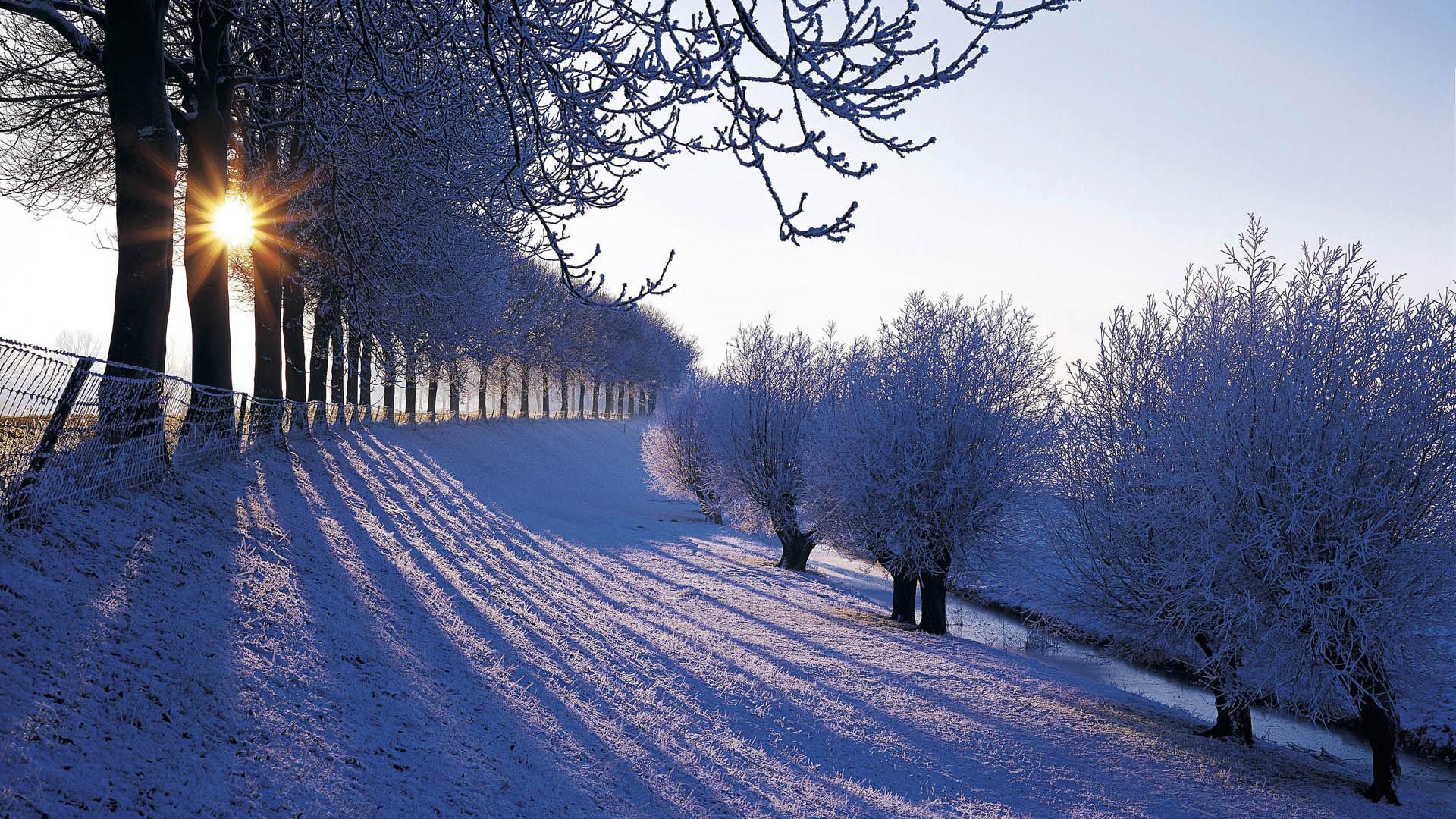 … free winter desktop wallpaper wallpapersafari …