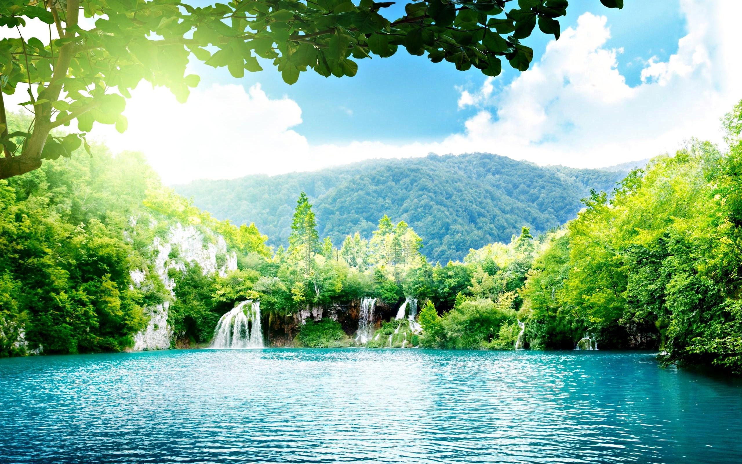 The most beautiful landscape of the wood HD Desktop Wallpaper
