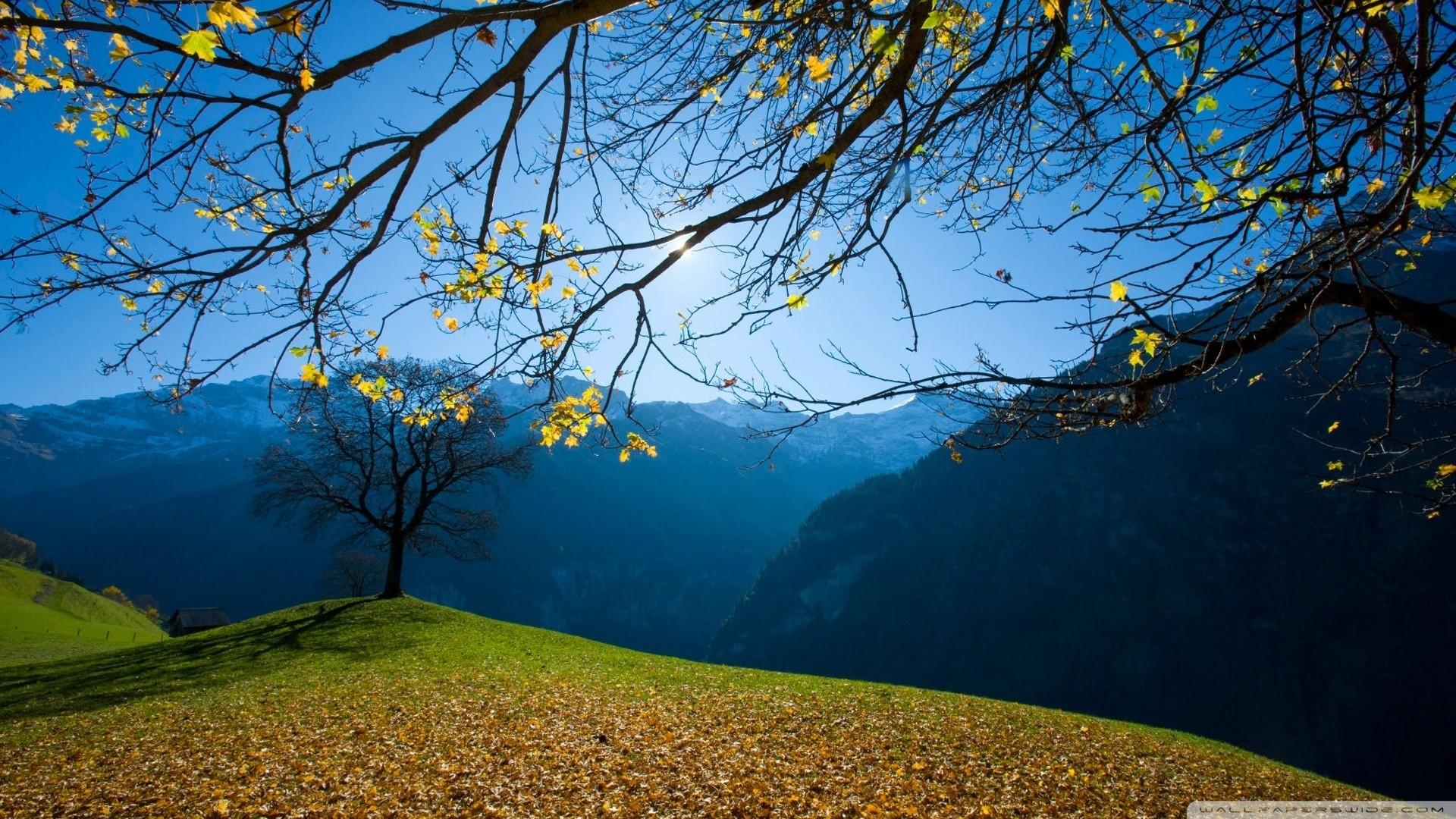 switzerland landscape wallpaper – Bing Images