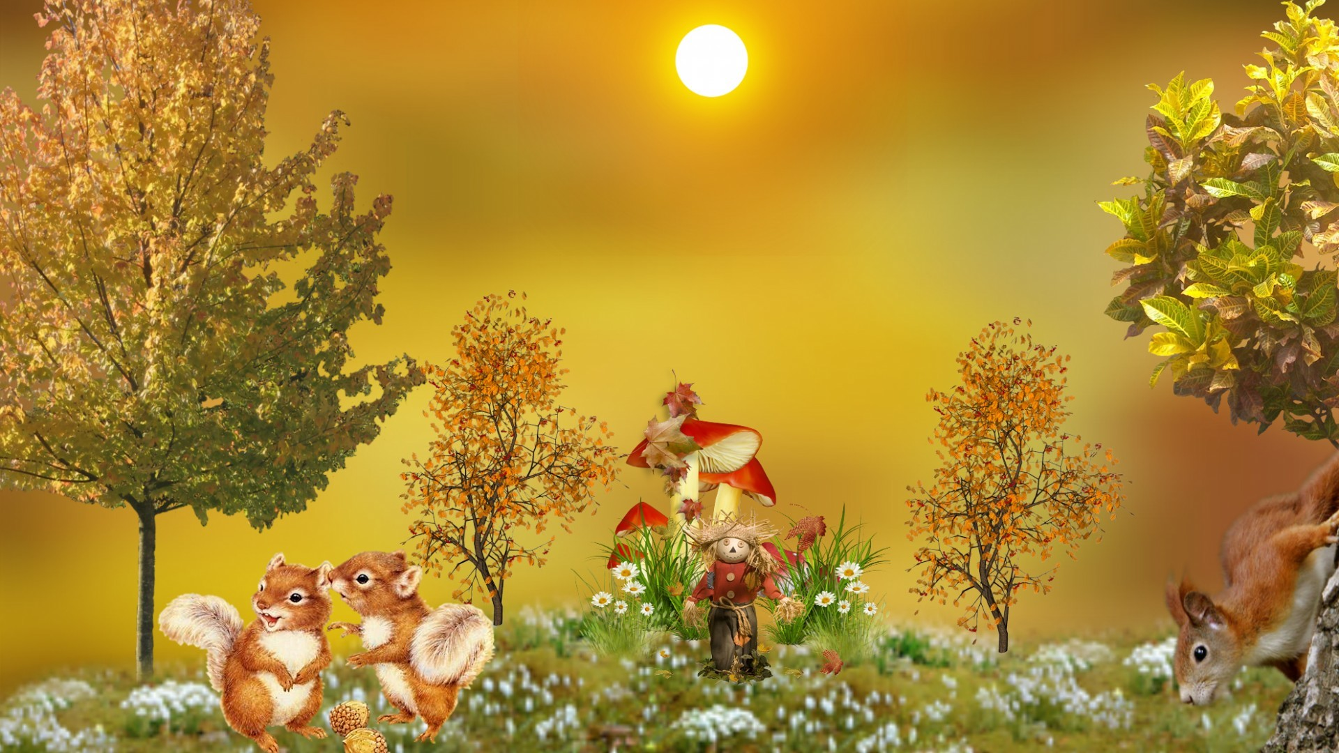 SuperHD.pics: Autumn squirrels cute fall pretty beautiful desktop .