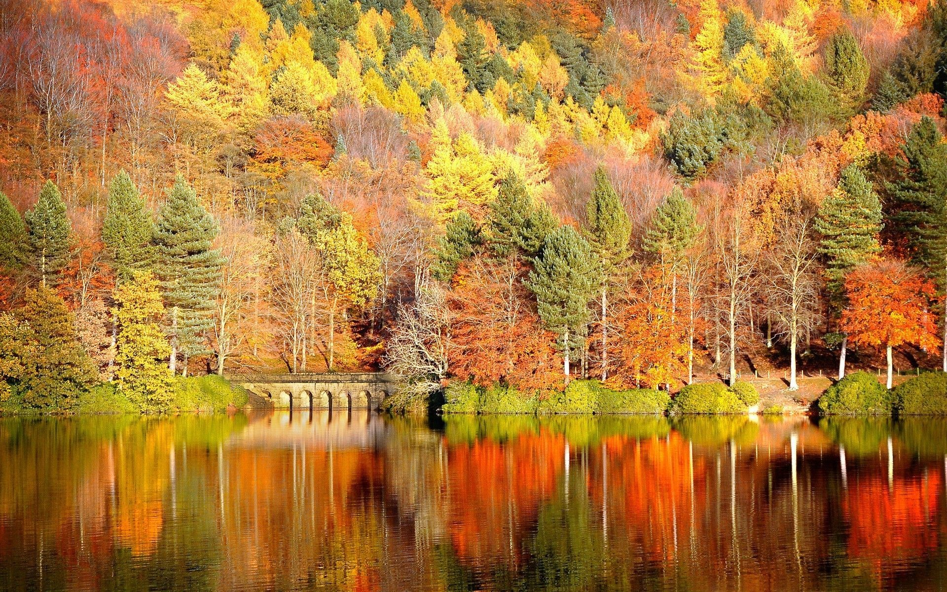 Beautiful Autumn Desktop Wallpaper – New HD Wallpapers