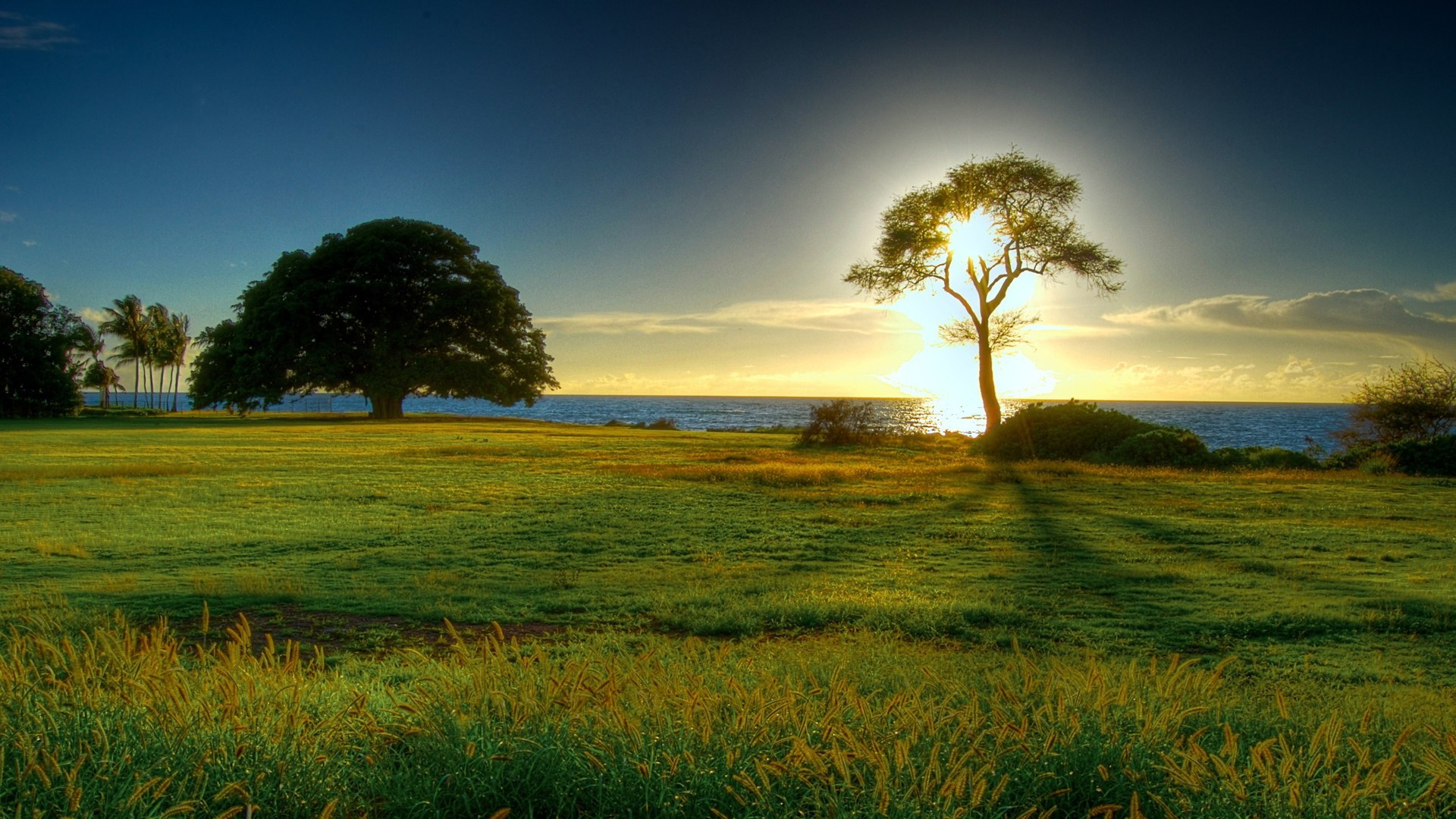 Beautiful Nature Wallpapers for Background HD Wallpaper of Nature .