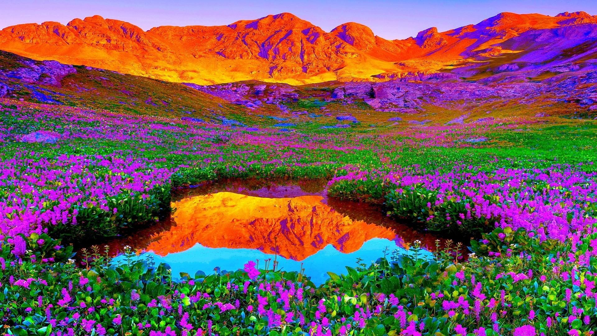 Brilliant Colors Of Nature Hd Desktop Background wallpapers HD .