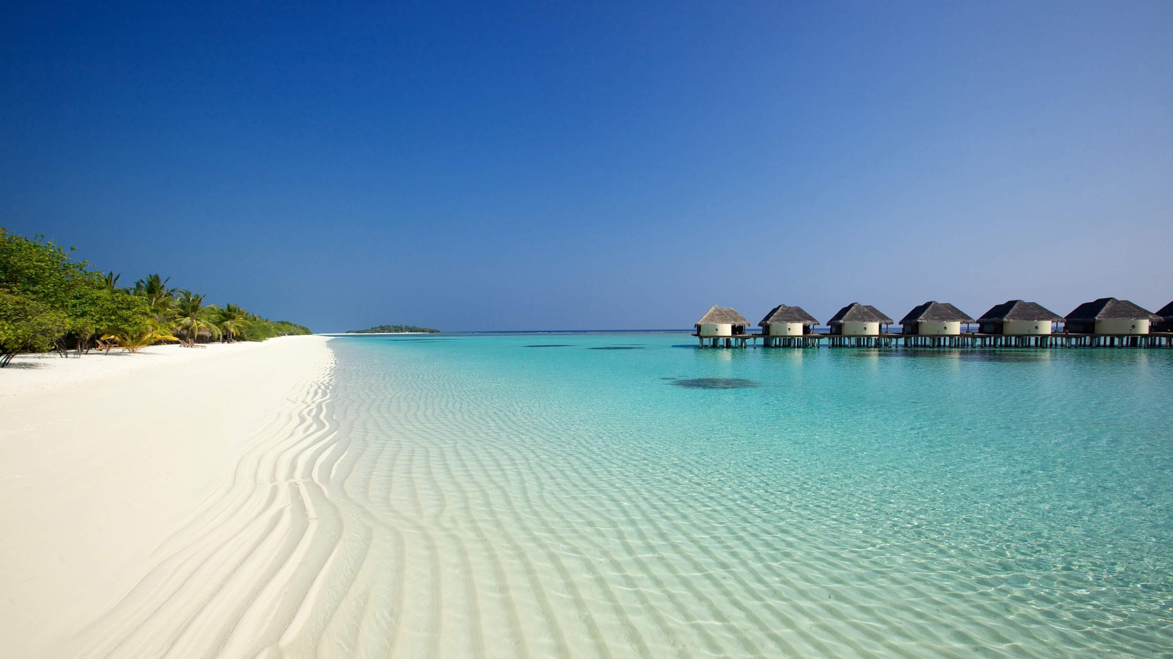 Wallpaper beach, ocean, sand, palm trees, bungalows